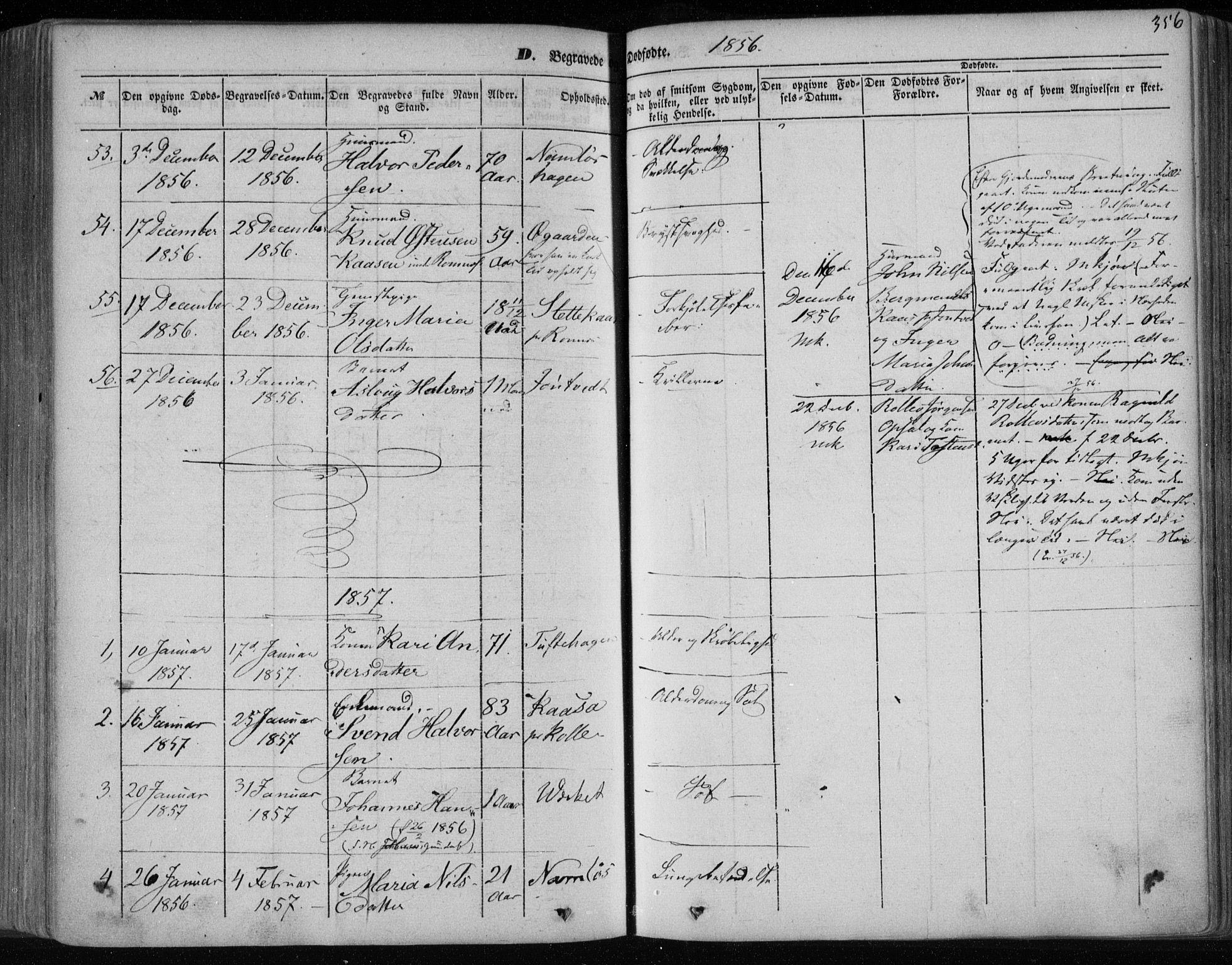 SAKO, Holla kirkebøker, F/Fa/L0005: Ministerialbok nr. 5, 1849-1860, s. 356