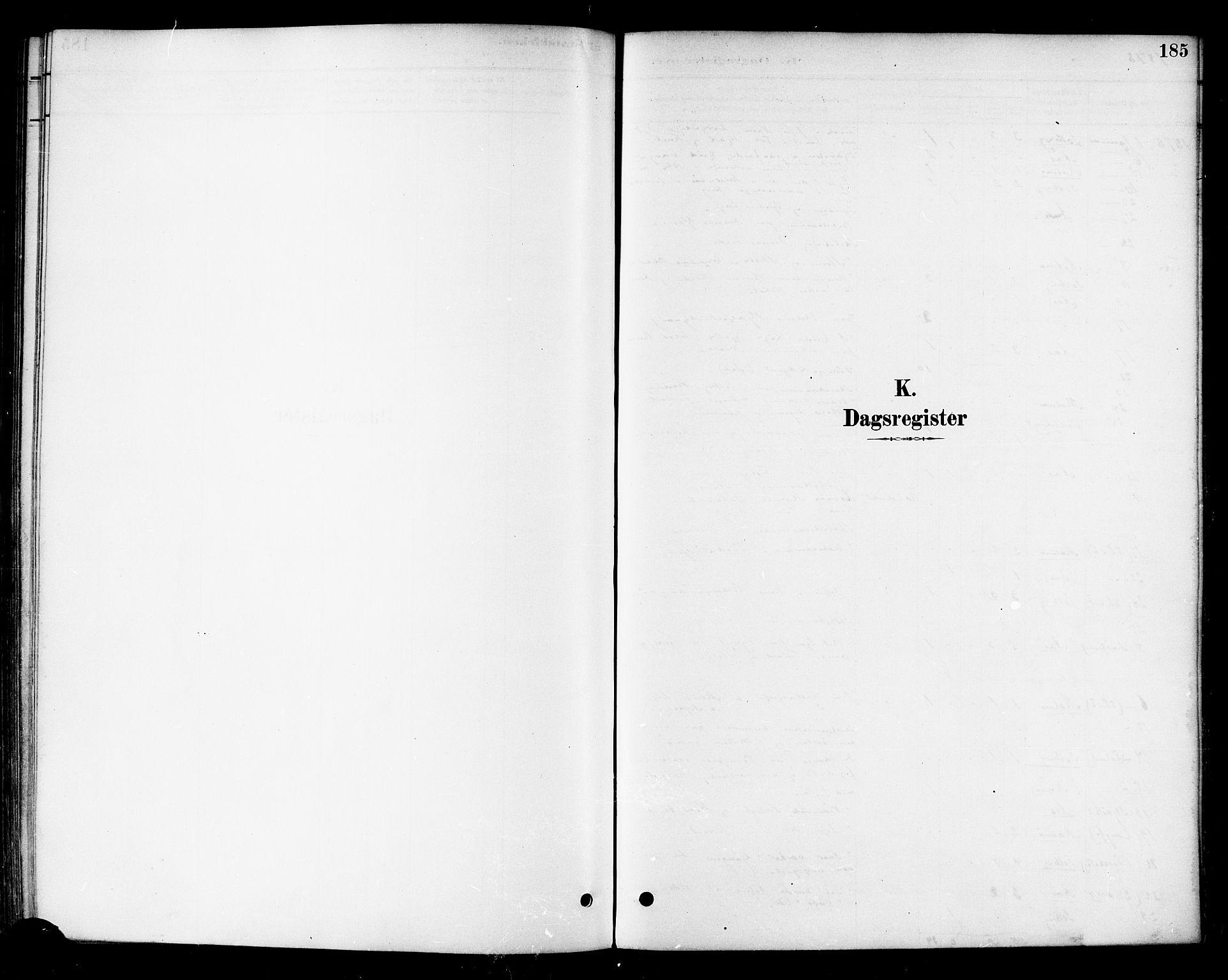 SAT, Ministerialprotokoller, klokkerbøker og fødselsregistre - Nord-Trøndelag, 741/L0395: Ministerialbok nr. 741A09, 1878-1888, s. 185