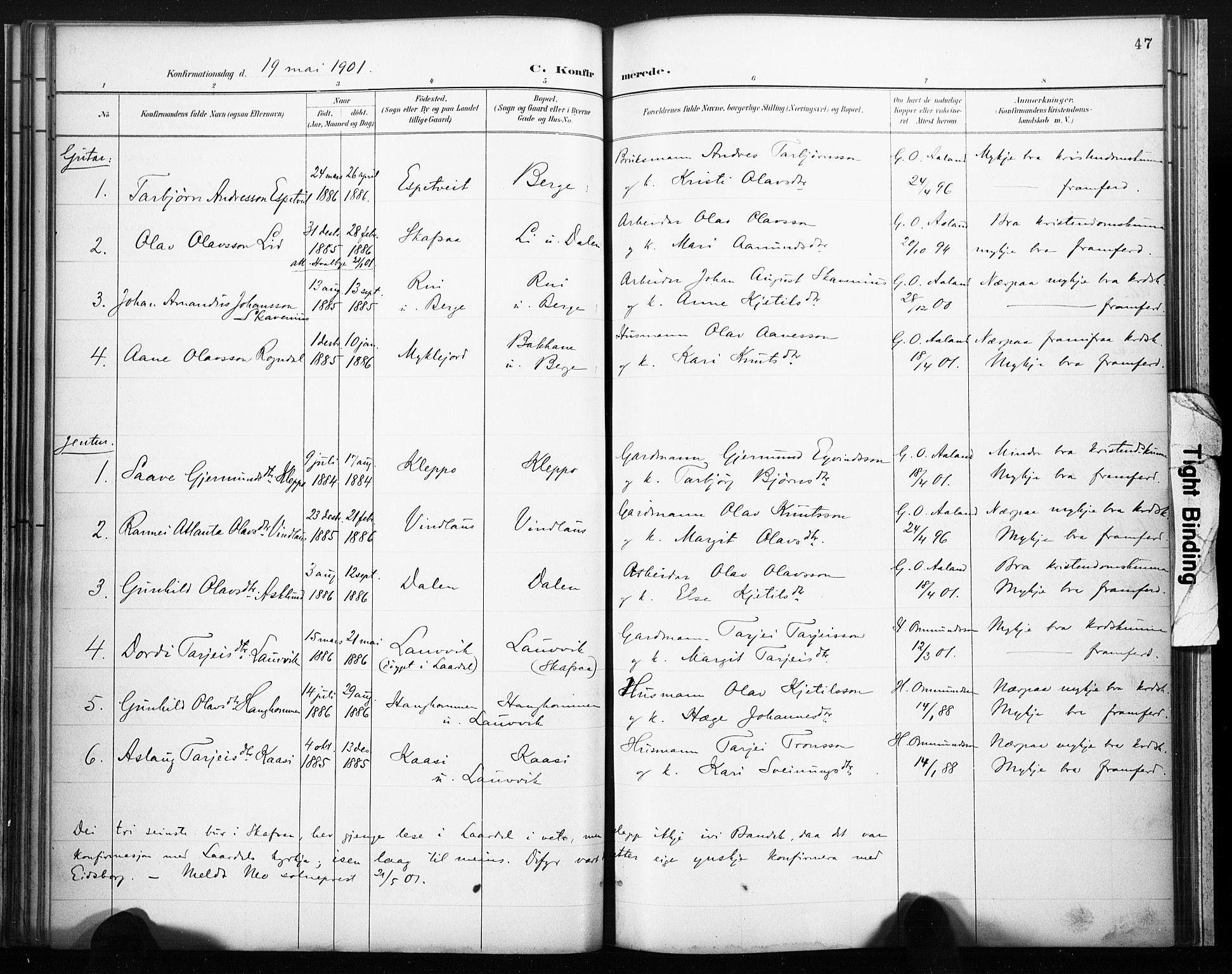 SAKO, Lårdal kirkebøker, F/Fb/L0002: Ministerialbok nr. II 2, 1887-1918, s. 47