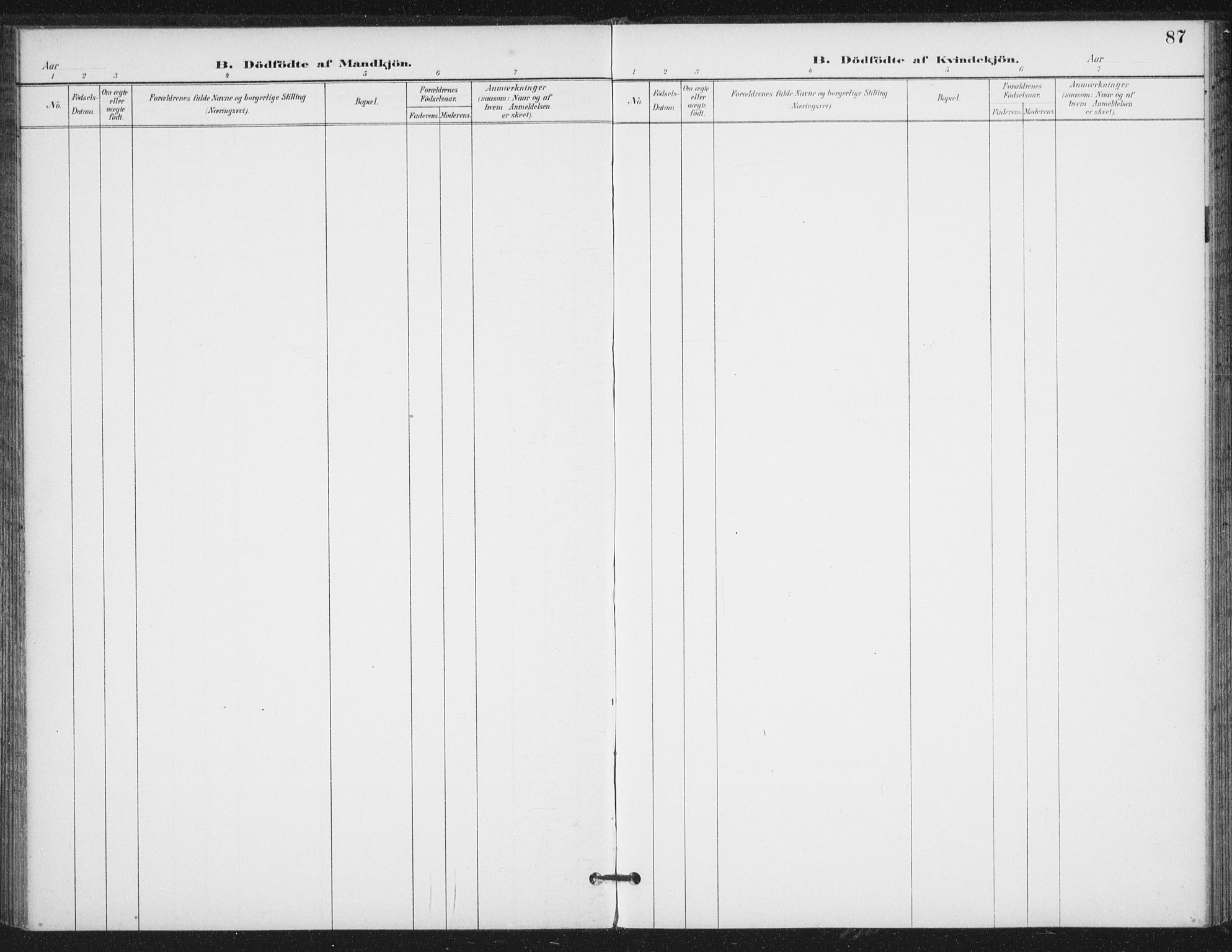 SAT, Ministerialprotokoller, klokkerbøker og fødselsregistre - Nord-Trøndelag, 714/L0131: Ministerialbok nr. 714A02, 1896-1918, s. 87