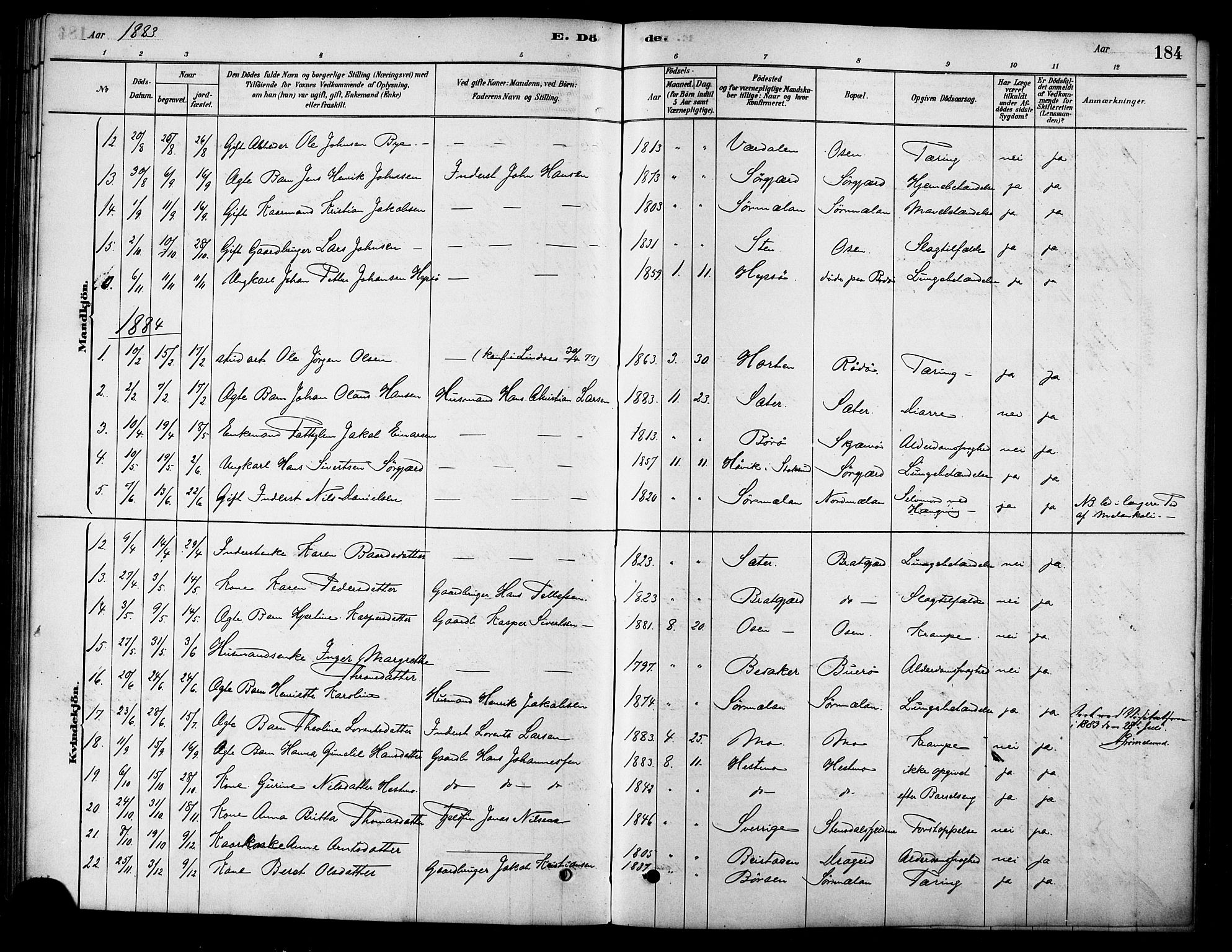 SAT, Ministerialprotokoller, klokkerbøker og fødselsregistre - Sør-Trøndelag, 658/L0722: Ministerialbok nr. 658A01, 1879-1896, s. 184
