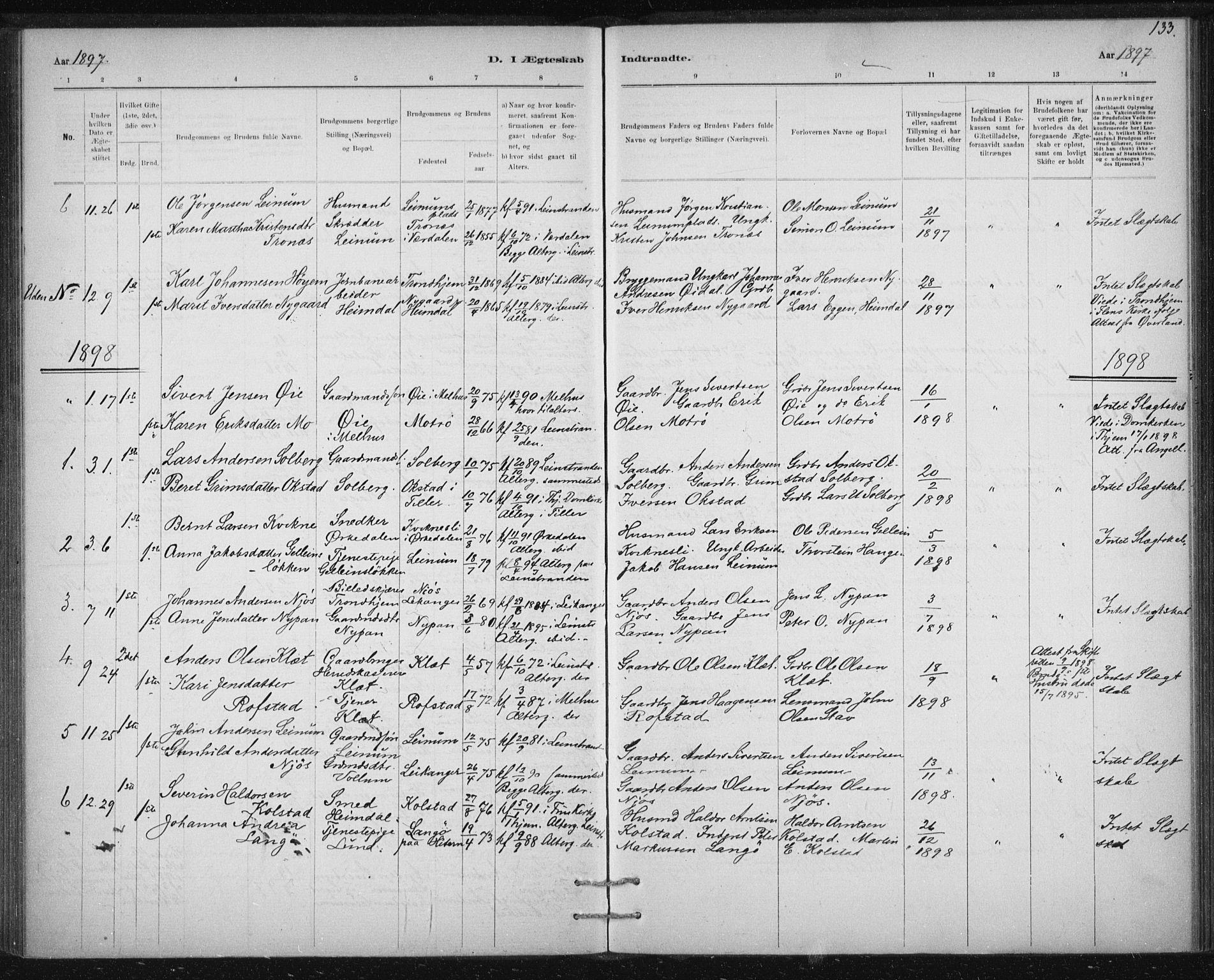 SAT, Ministerialprotokoller, klokkerbøker og fødselsregistre - Sør-Trøndelag, 613/L0392: Ministerialbok nr. 613A01, 1887-1906, s. 133