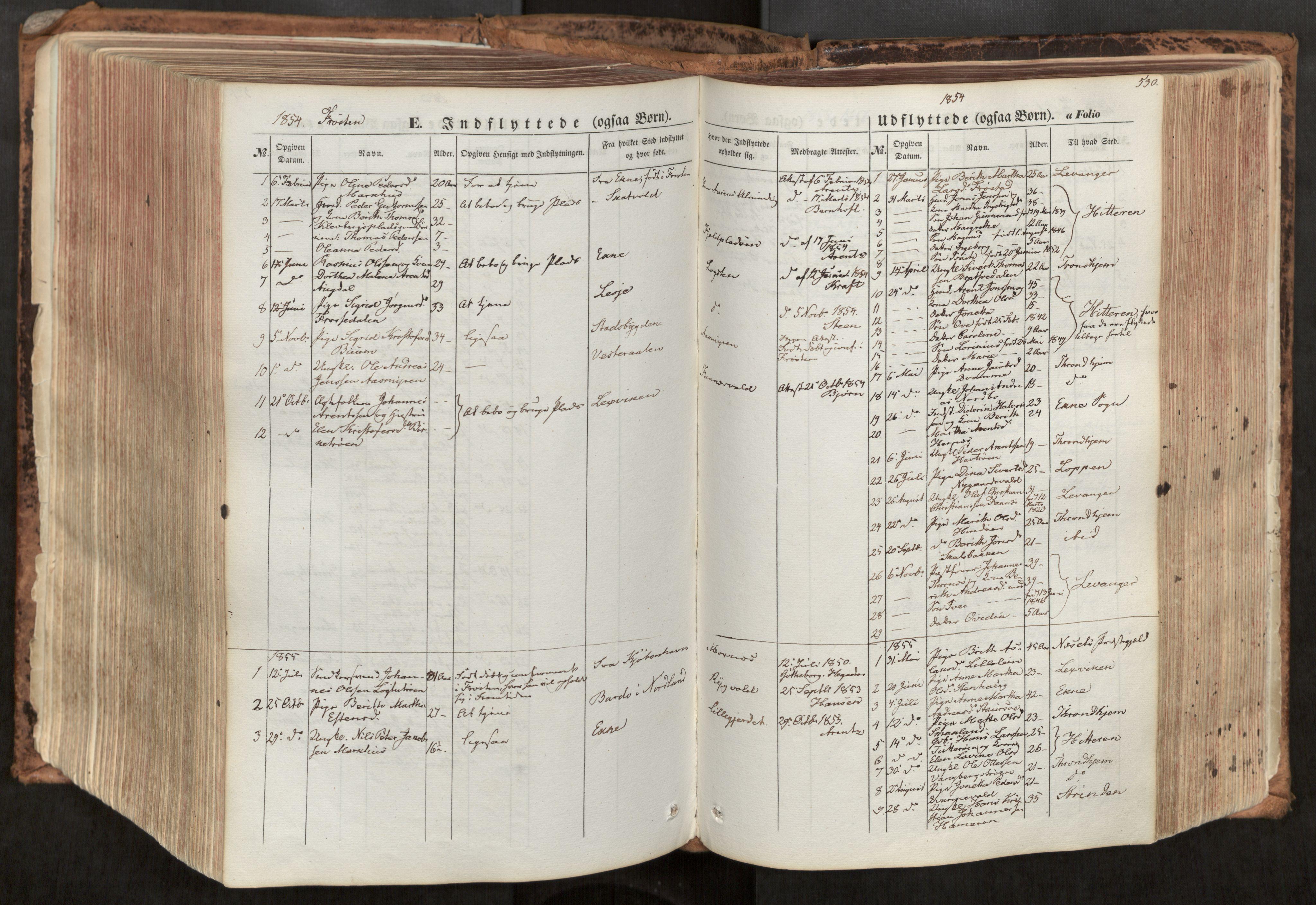 SAT, Ministerialprotokoller, klokkerbøker og fødselsregistre - Nord-Trøndelag, 713/L0116: Ministerialbok nr. 713A07, 1850-1877, s. 530