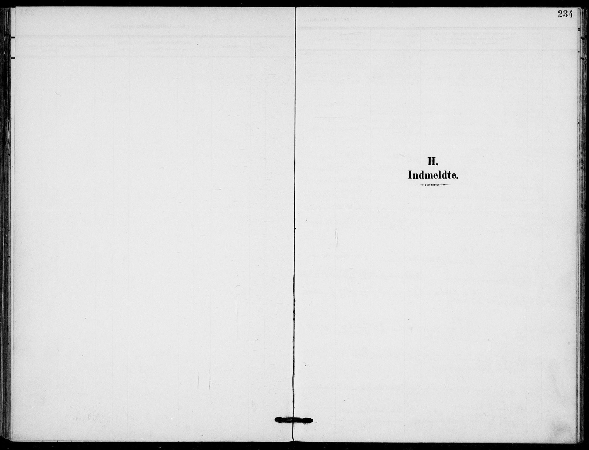 SAKO, Holla kirkebøker, F/Fa/L0012: Ministerialbok nr. 12, 1907-1923, s. 234