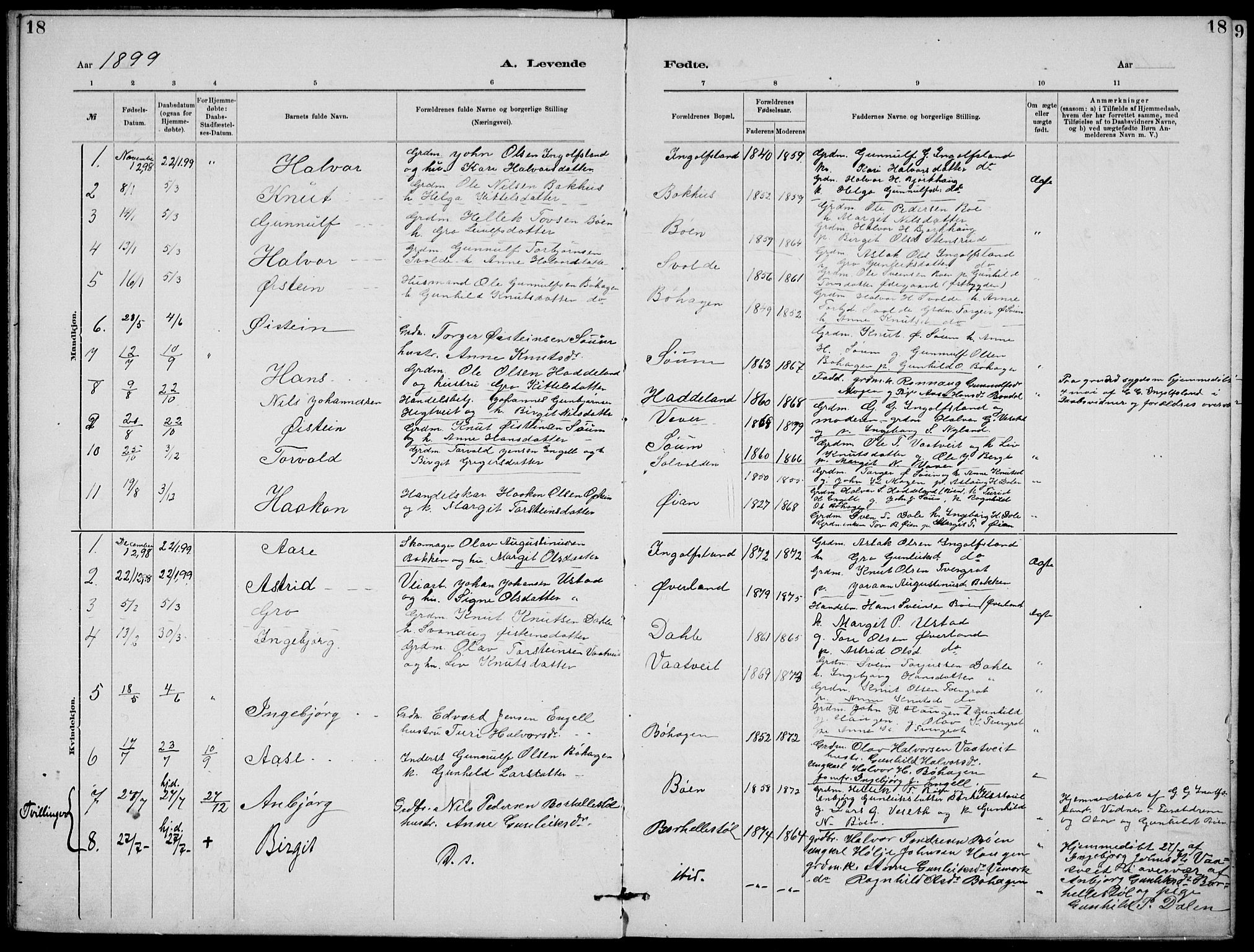SAKO, Rjukan kirkebøker, G/Ga/L0001: Klokkerbok nr. 1, 1880-1914, s. 18