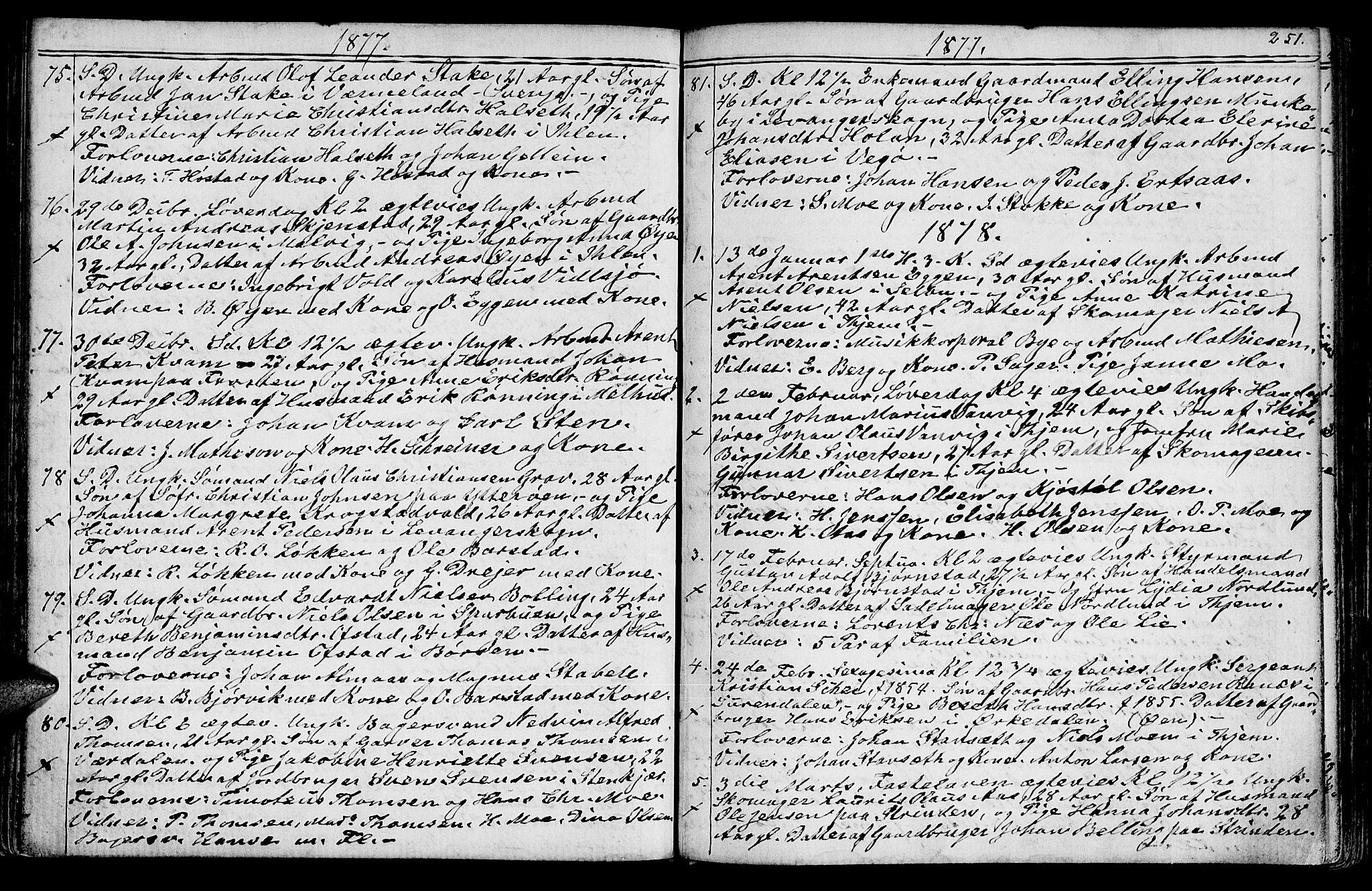 SAT, Ministerialprotokoller, klokkerbøker og fødselsregistre - Sør-Trøndelag, 602/L0142: Klokkerbok nr. 602C10, 1872-1894, s. 251