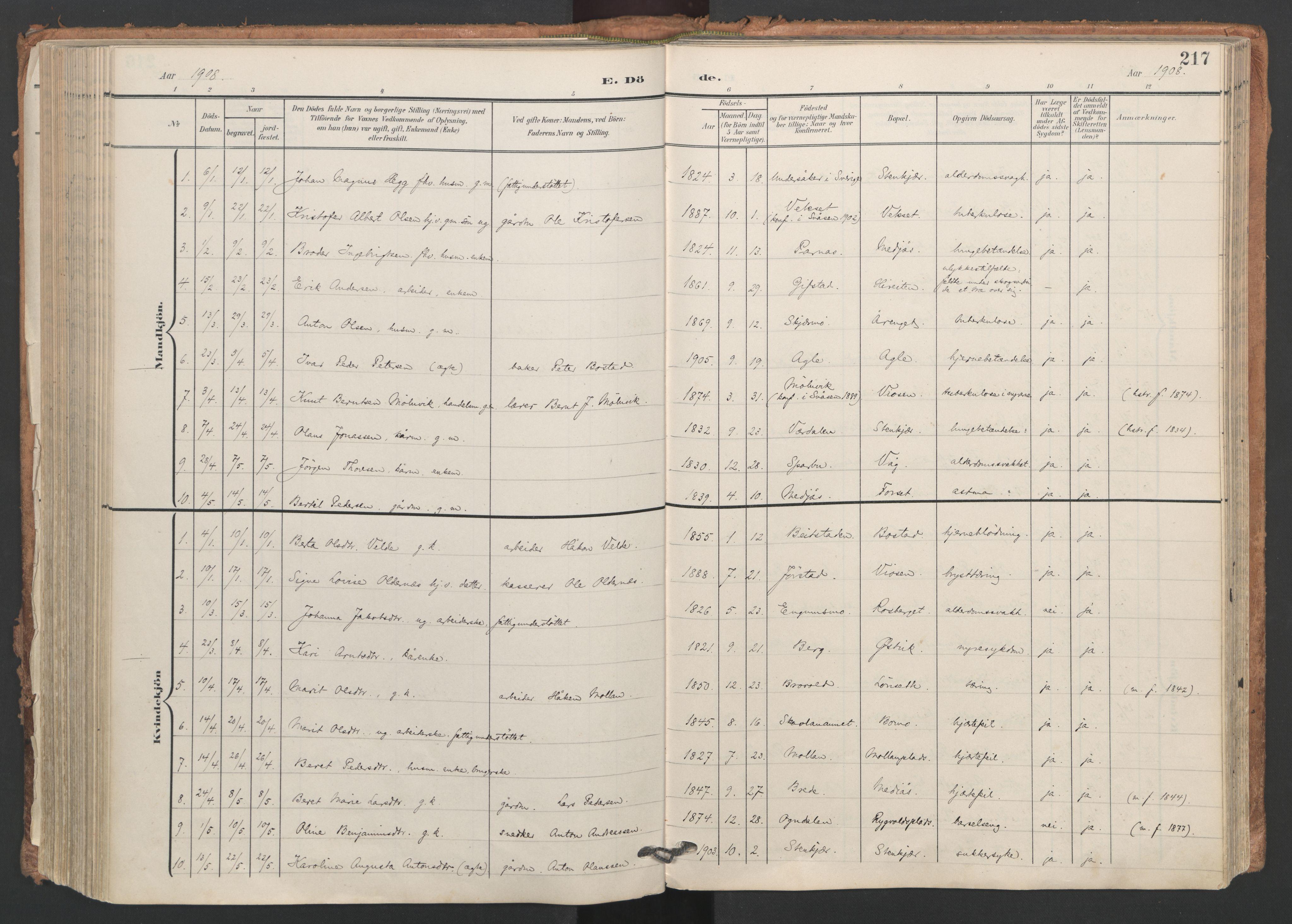 SAT, Ministerialprotokoller, klokkerbøker og fødselsregistre - Nord-Trøndelag, 749/L0477: Ministerialbok nr. 749A11, 1902-1927, s. 217