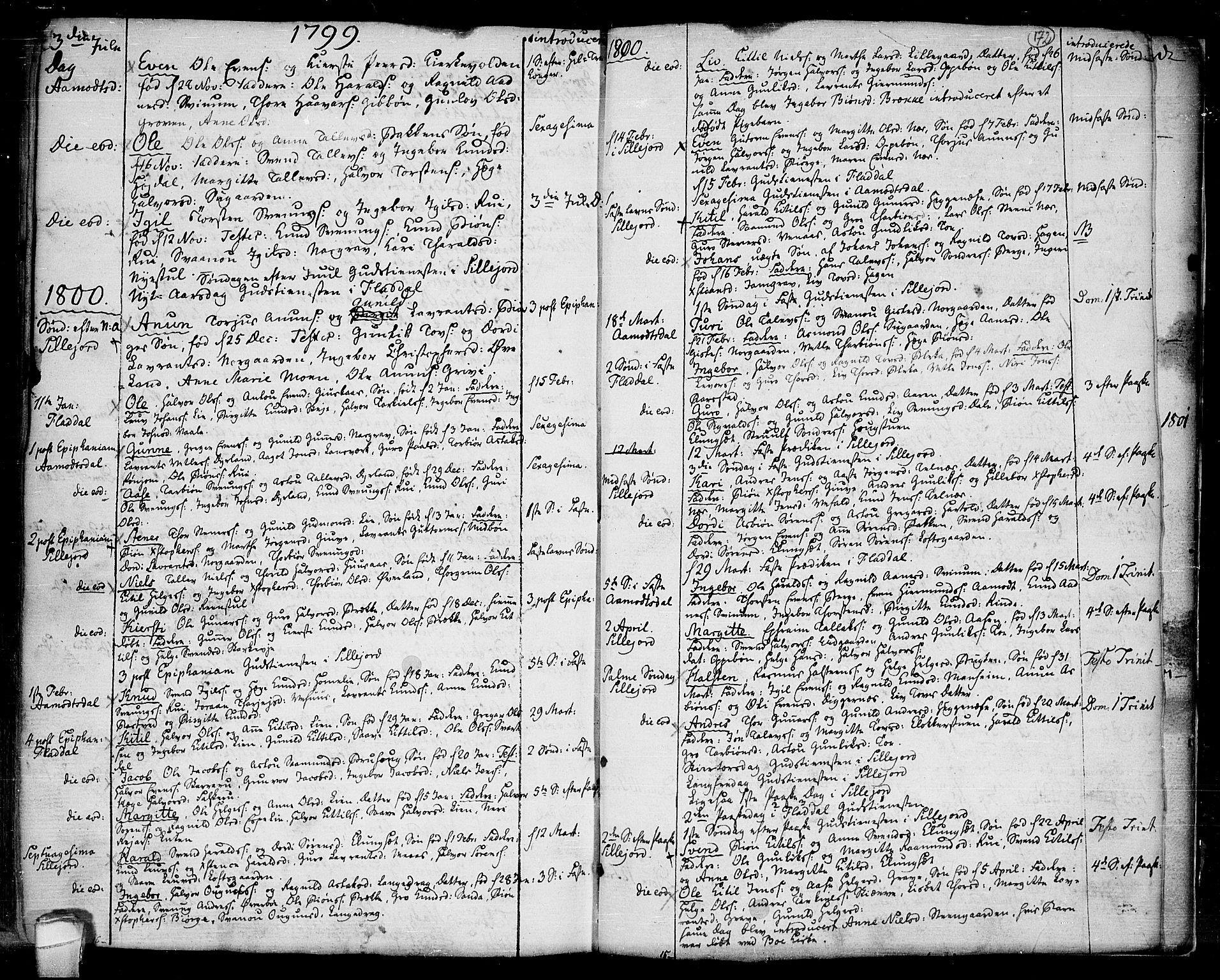 SAKO, Seljord kirkebøker, F/Fa/L0007: Ministerialbok nr. I 7, 1755-1800, s. 172