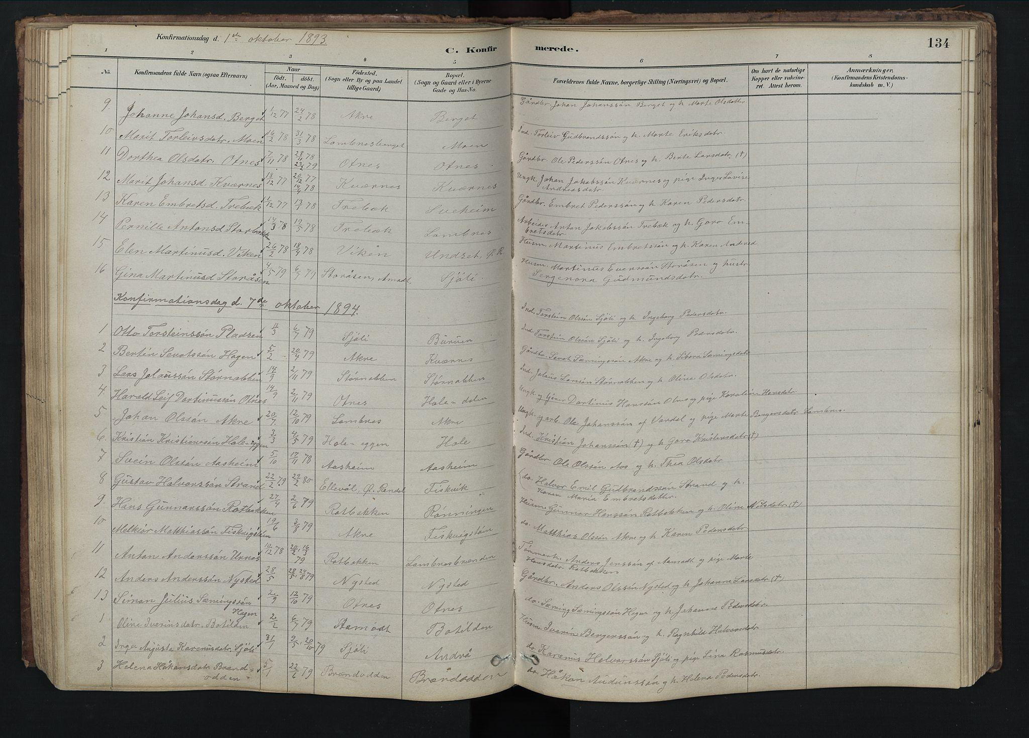 SAH, Rendalen prestekontor, H/Ha/Hab/L0009: Klokkerbok nr. 9, 1879-1902, s. 134