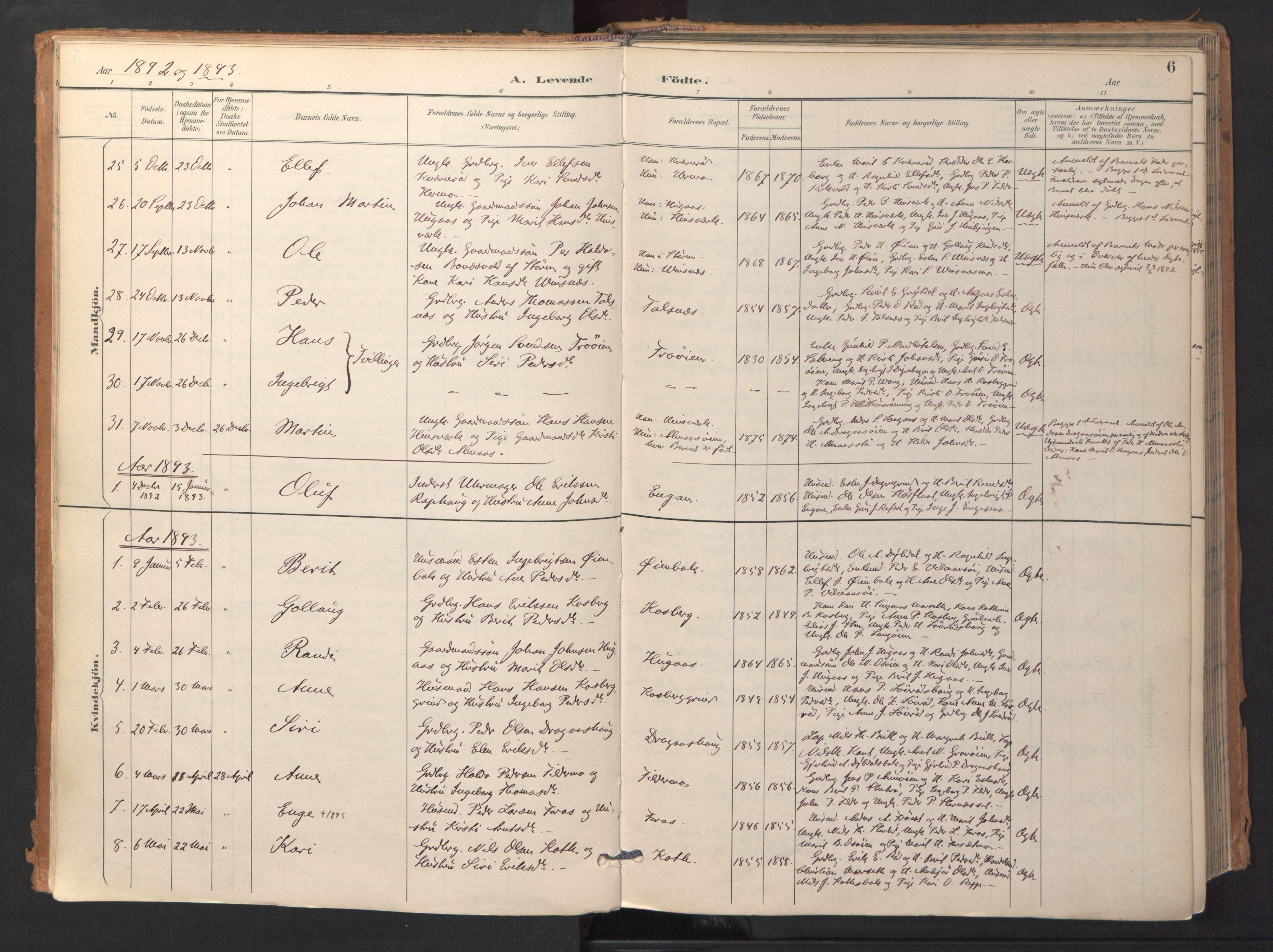 SAT, Ministerialprotokoller, klokkerbøker og fødselsregistre - Sør-Trøndelag, 688/L1025: Ministerialbok nr. 688A02, 1891-1909, s. 6
