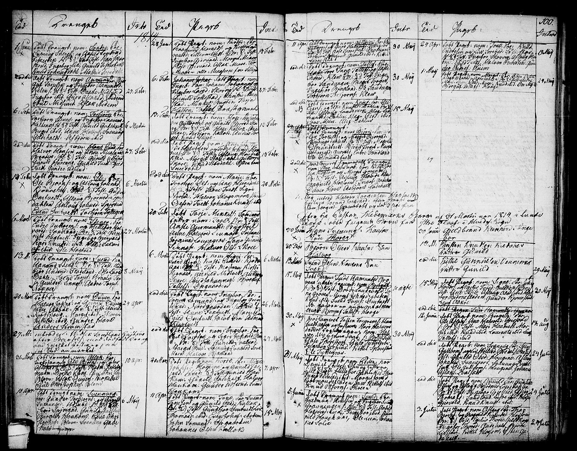 SAKO, Kviteseid kirkebøker, F/Fa/L0004: Ministerialbok nr. I 4, 1800-1814, s. 100