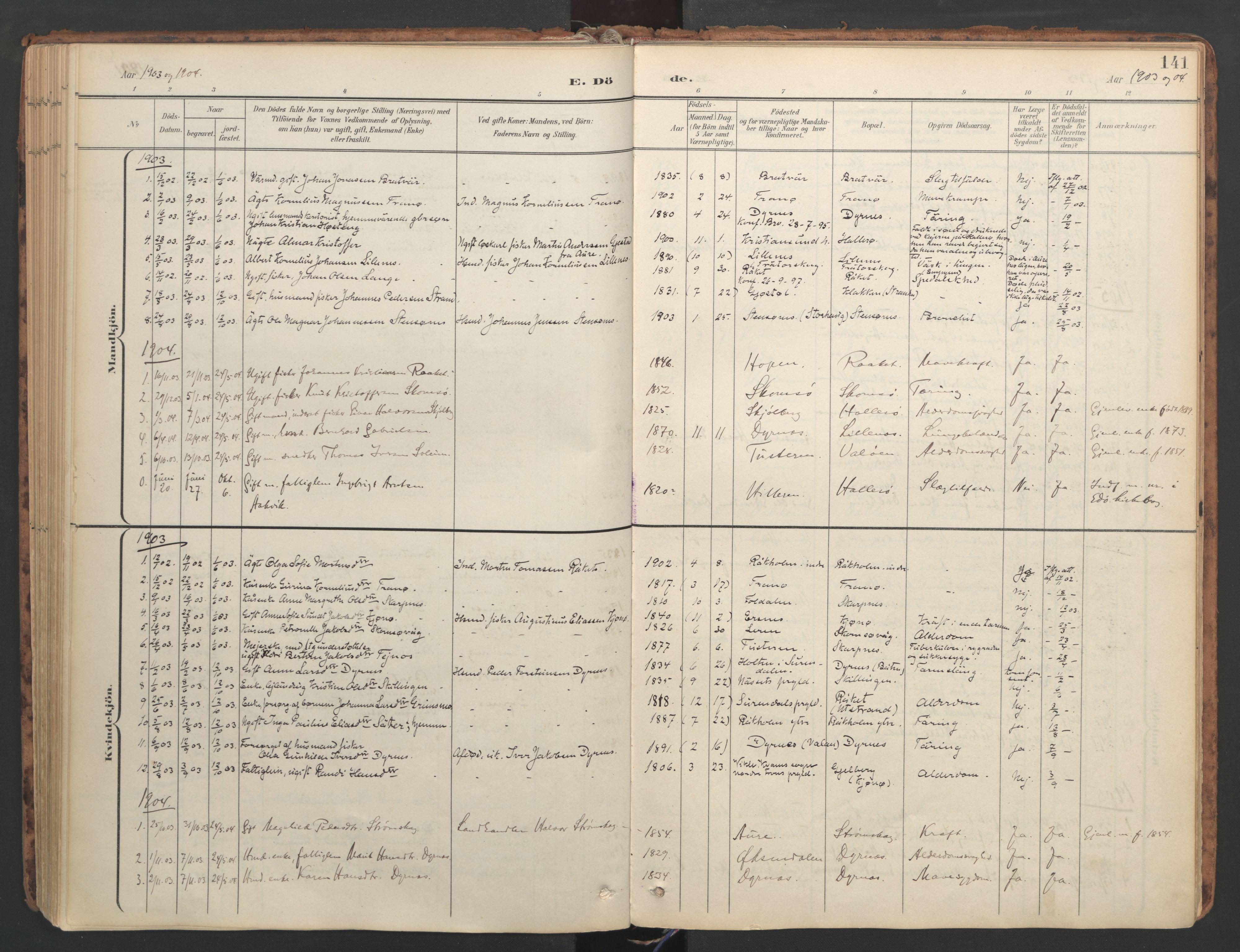 SAT, Ministerialprotokoller, klokkerbøker og fødselsregistre - Møre og Romsdal, 582/L0948: Ministerialbok nr. 582A02, 1901-1922, s. 141