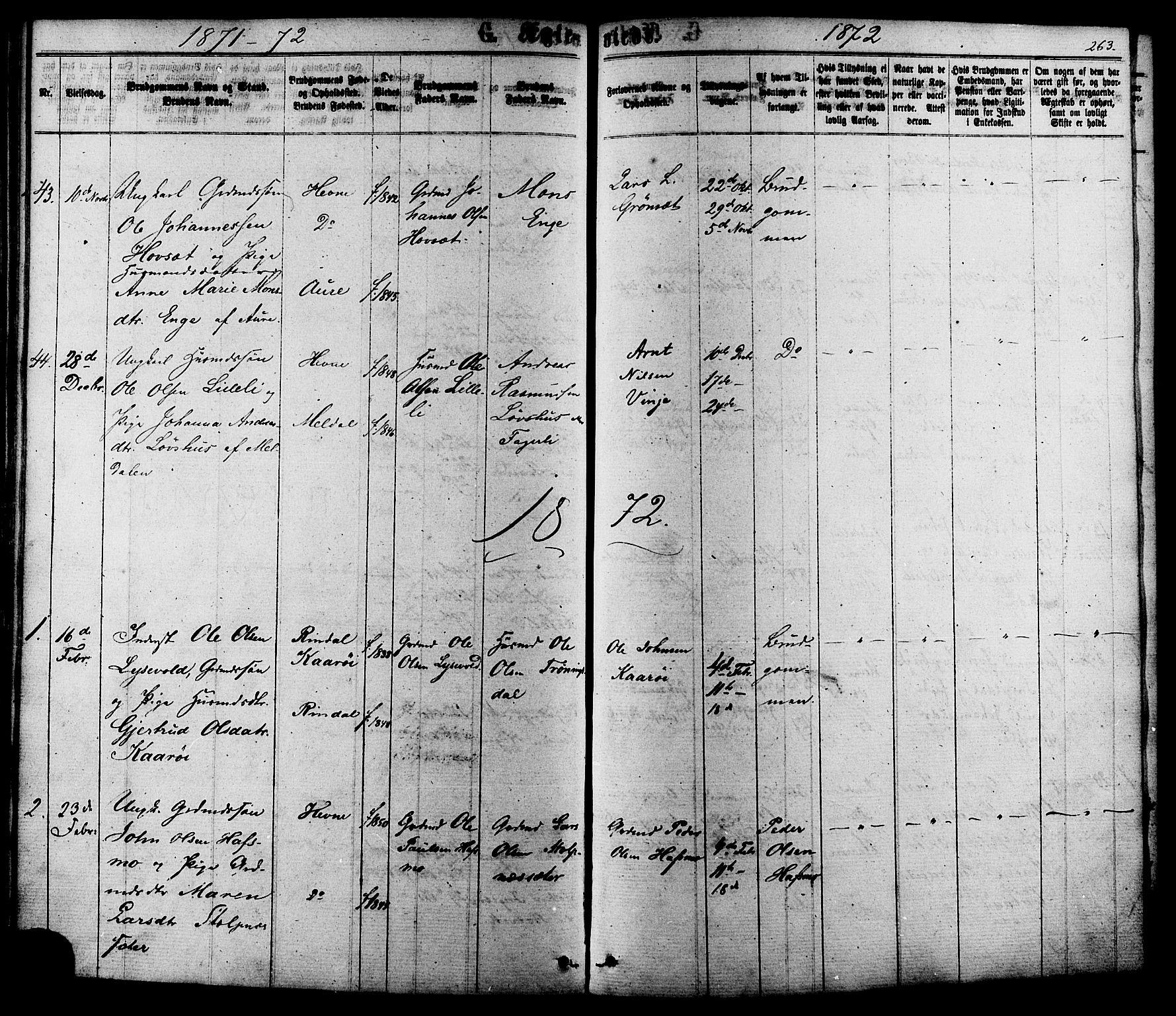 SAT, Ministerialprotokoller, klokkerbøker og fødselsregistre - Sør-Trøndelag, 630/L0495: Ministerialbok nr. 630A08, 1868-1878, s. 263