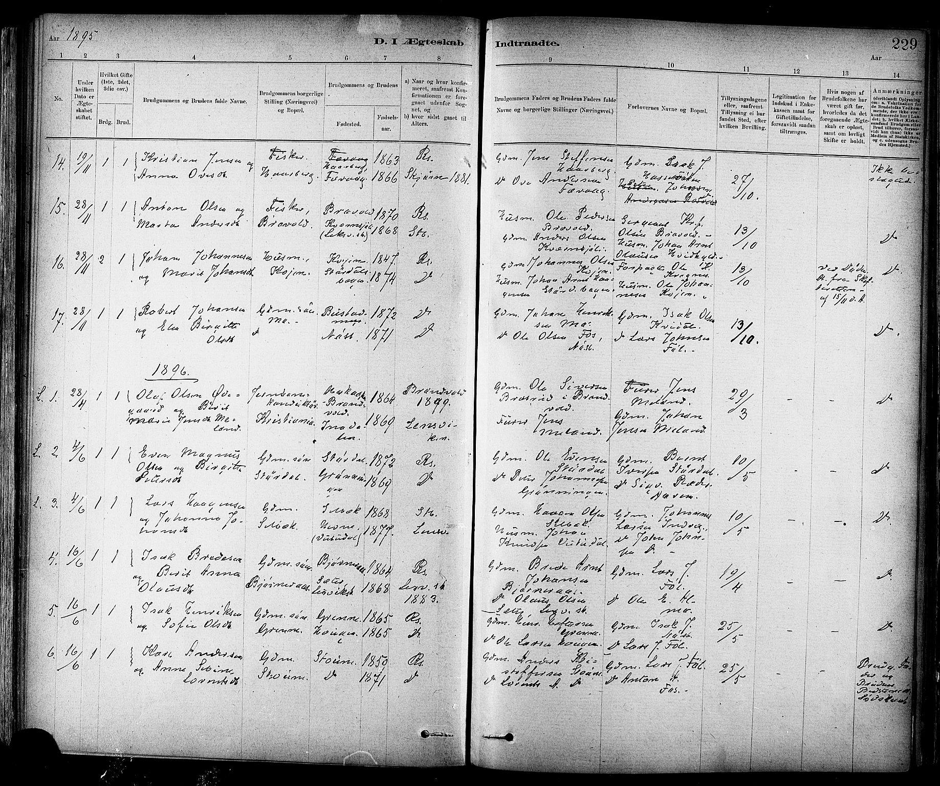 SAT, Ministerialprotokoller, klokkerbøker og fødselsregistre - Sør-Trøndelag, 647/L0634: Ministerialbok nr. 647A01, 1885-1896, s. 229