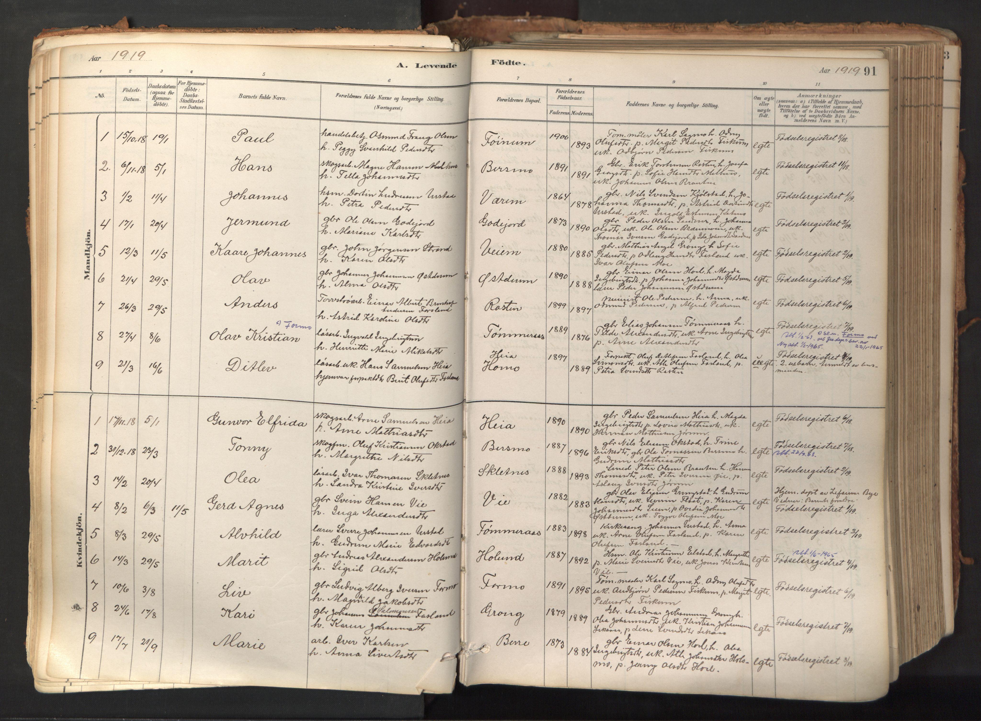 SAT, Ministerialprotokoller, klokkerbøker og fødselsregistre - Nord-Trøndelag, 758/L0519: Ministerialbok nr. 758A04, 1880-1926, s. 91