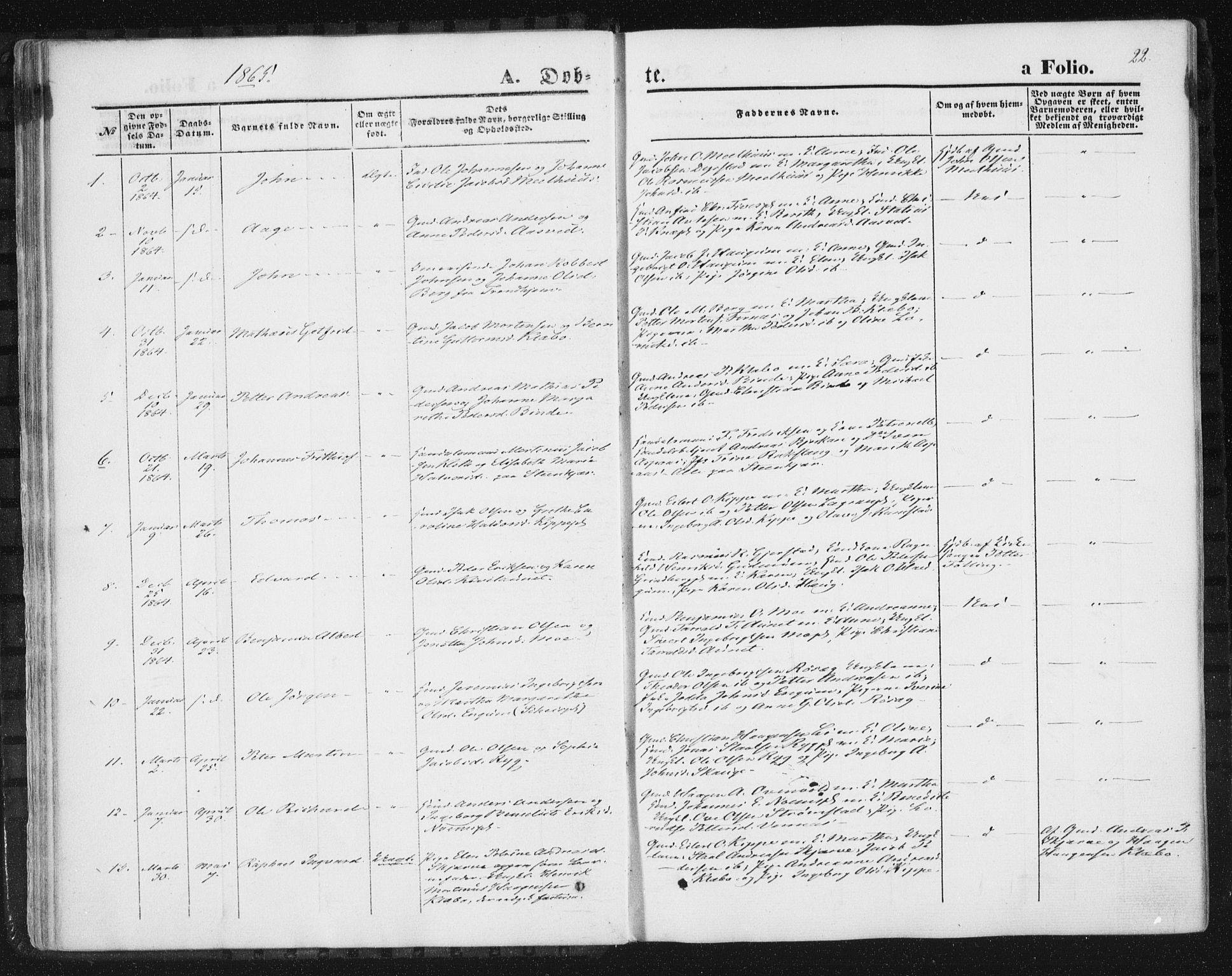 SAT, Ministerialprotokoller, klokkerbøker og fødselsregistre - Nord-Trøndelag, 746/L0447: Ministerialbok nr. 746A06, 1860-1877, s. 22