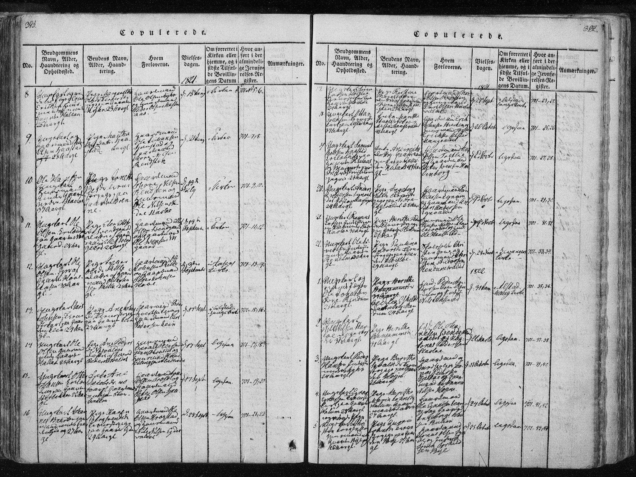 SAT, Ministerialprotokoller, klokkerbøker og fødselsregistre - Nord-Trøndelag, 717/L0148: Ministerialbok nr. 717A04 /1, 1816-1825, s. 393-394