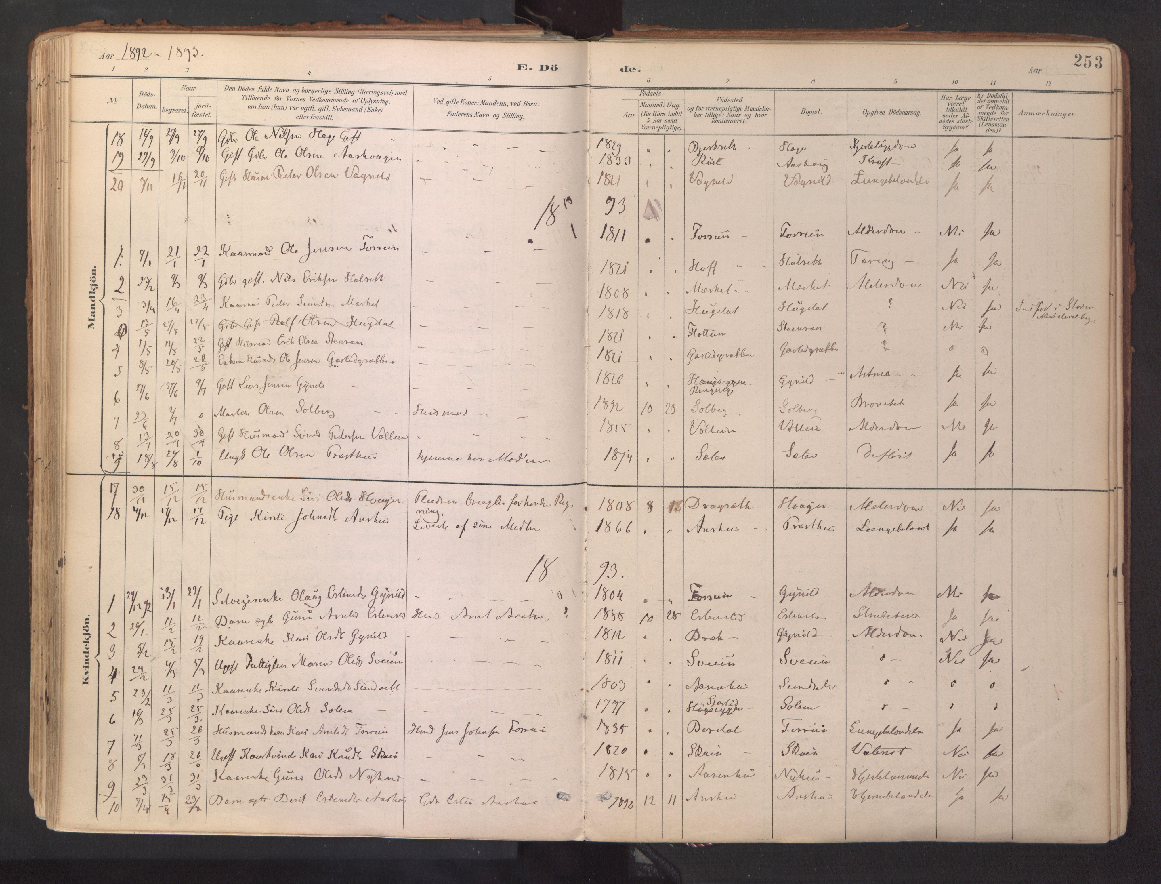 SAT, Ministerialprotokoller, klokkerbøker og fødselsregistre - Sør-Trøndelag, 689/L1041: Ministerialbok nr. 689A06, 1891-1923, s. 253