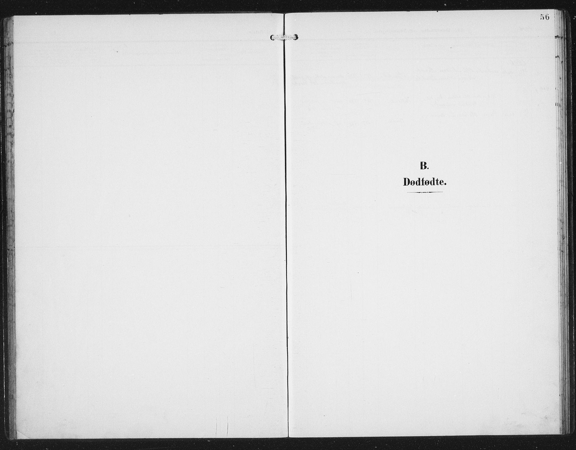 SAB, Aurland Sokneprestembete*, Klokkerbok nr. C 3, 1901-1933, s. 56