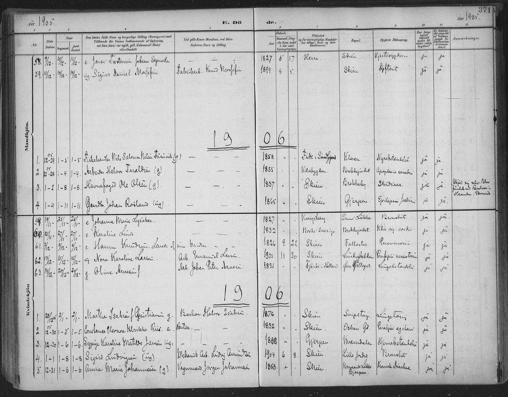 SAKO, Skien kirkebøker, F/Fa/L0011: Ministerialbok nr. 11, 1900-1907, s. 371