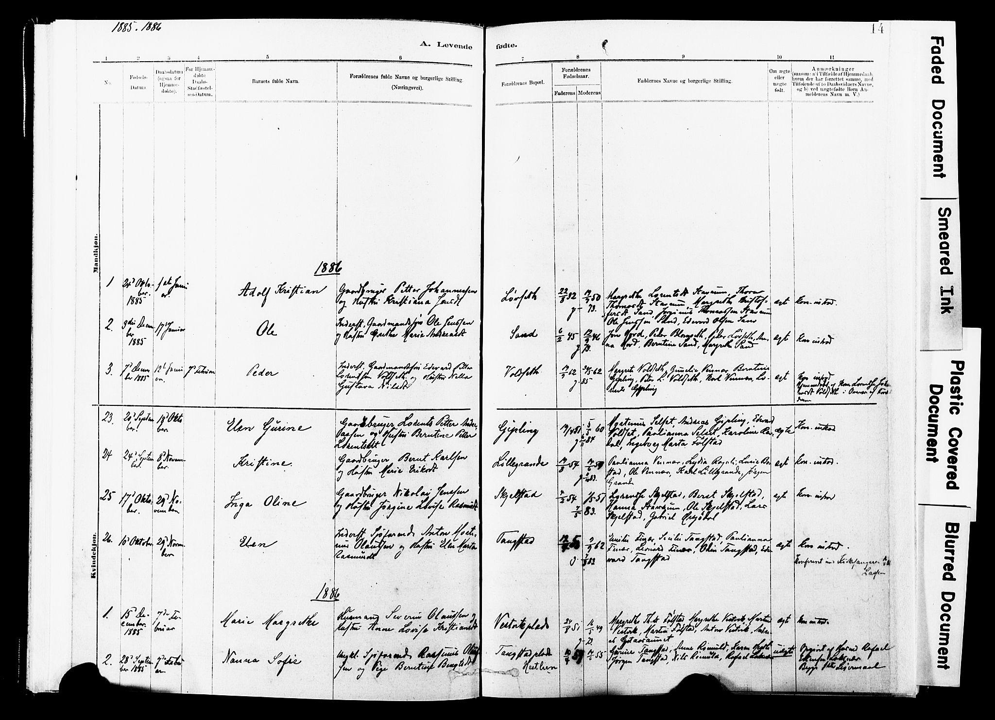 SAT, Ministerialprotokoller, klokkerbøker og fødselsregistre - Nord-Trøndelag, 744/L0420: Ministerialbok nr. 744A04, 1882-1904, s. 14