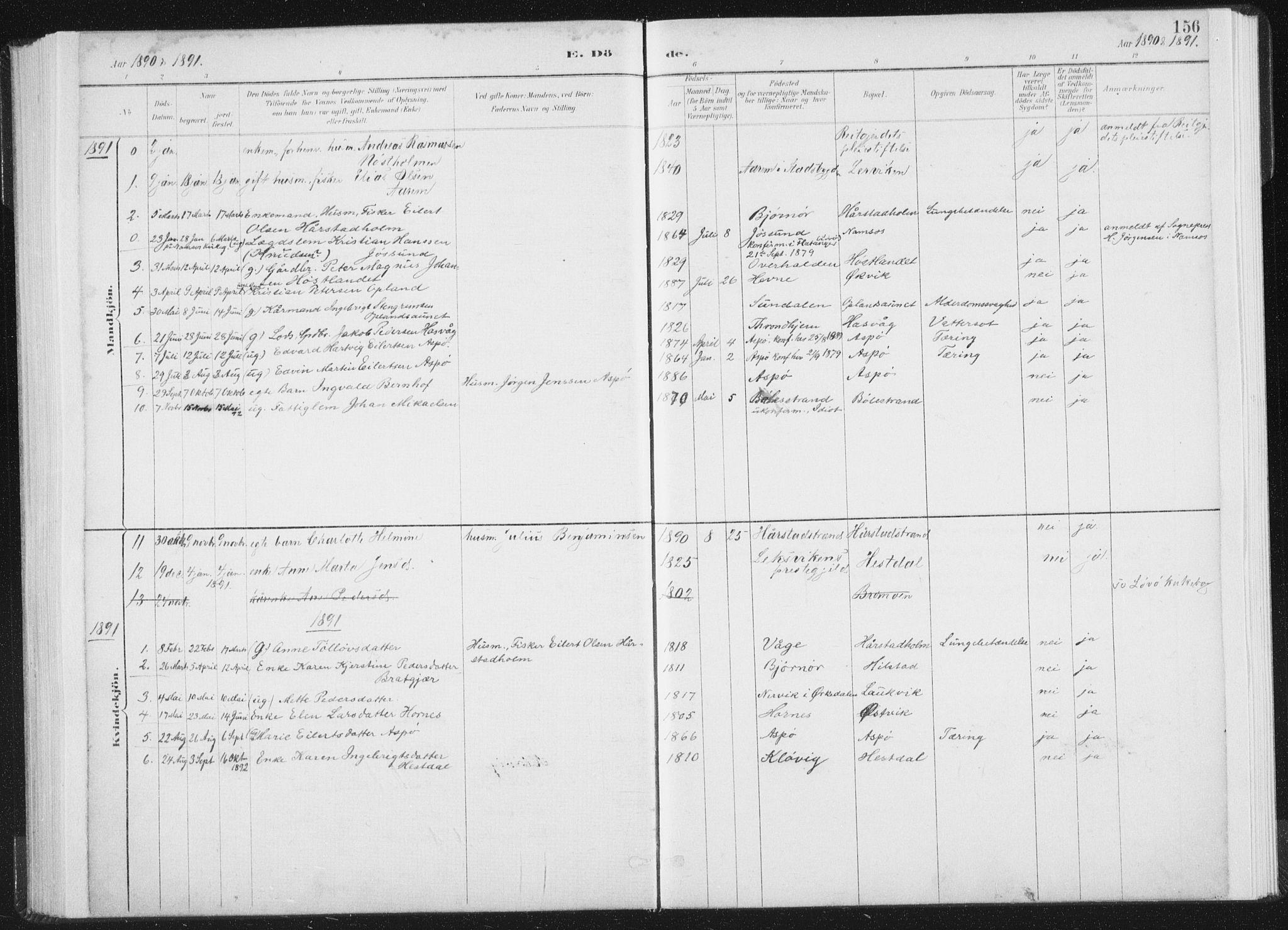 SAT, Ministerialprotokoller, klokkerbøker og fødselsregistre - Nord-Trøndelag, 771/L0597: Ministerialbok nr. 771A04, 1885-1910, s. 156