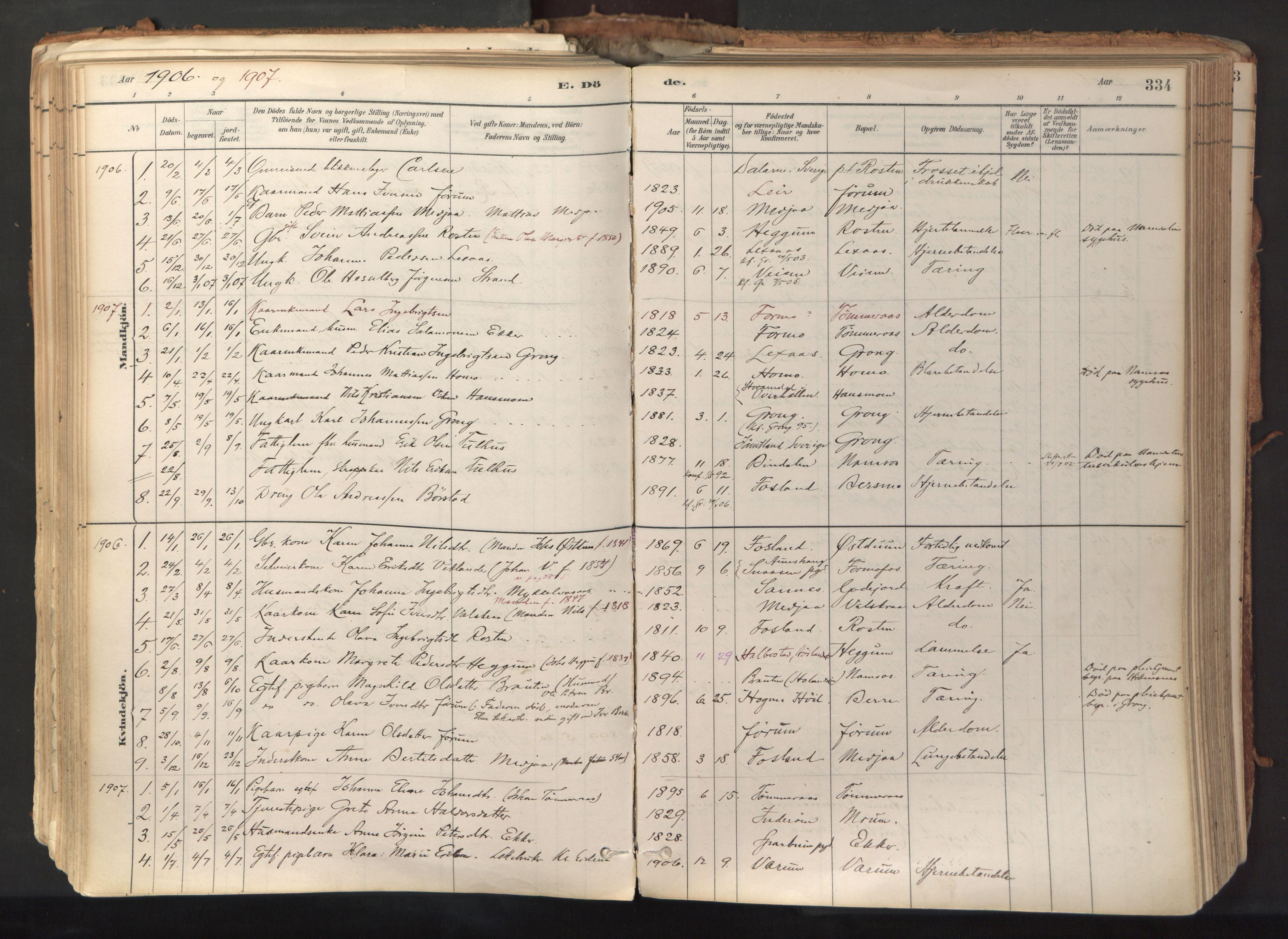 SAT, Ministerialprotokoller, klokkerbøker og fødselsregistre - Nord-Trøndelag, 758/L0519: Ministerialbok nr. 758A04, 1880-1926, s. 334