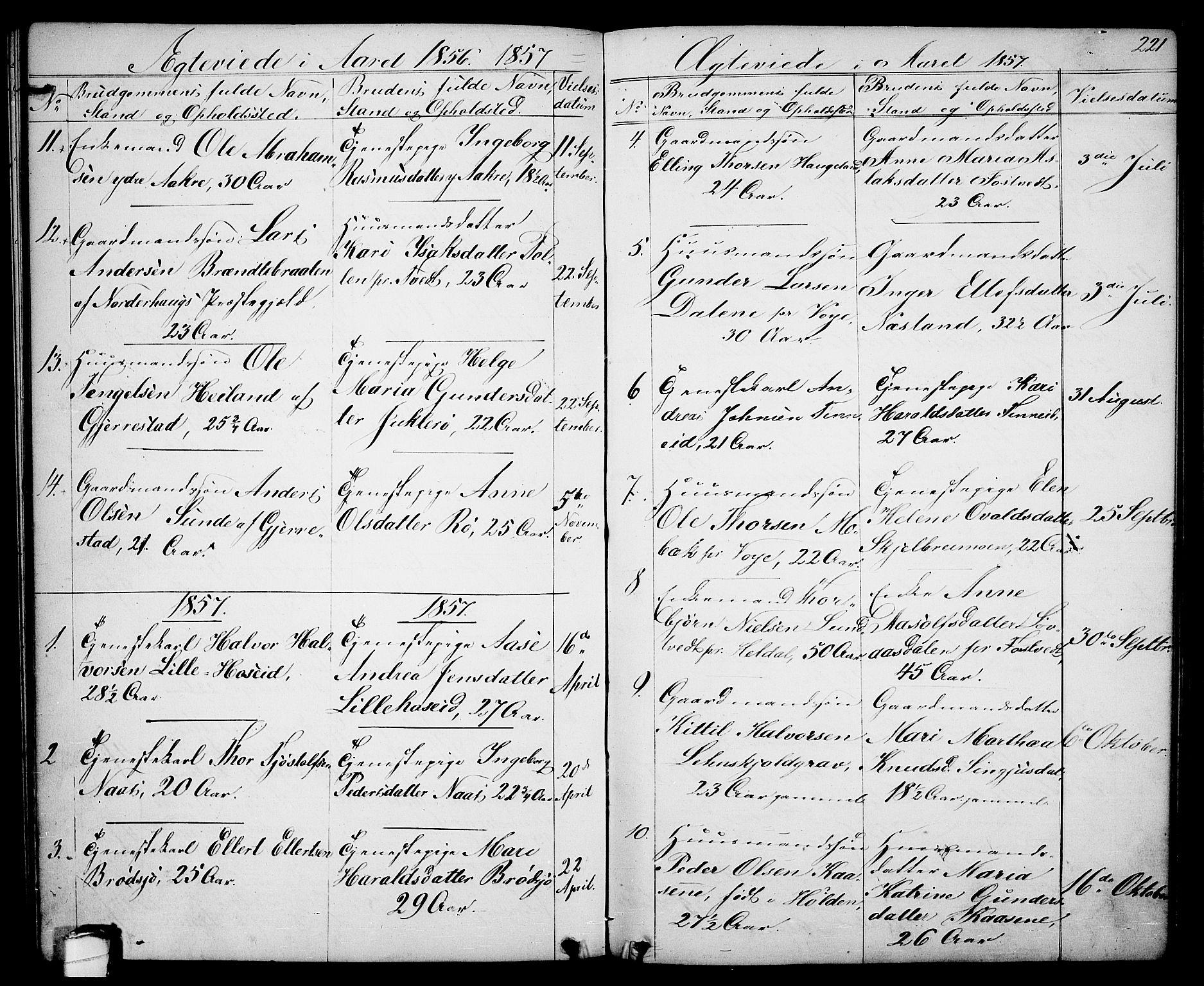SAKO, Drangedal kirkebøker, G/Ga/L0002: Klokkerbok nr. I 2, 1856-1887, s. 221