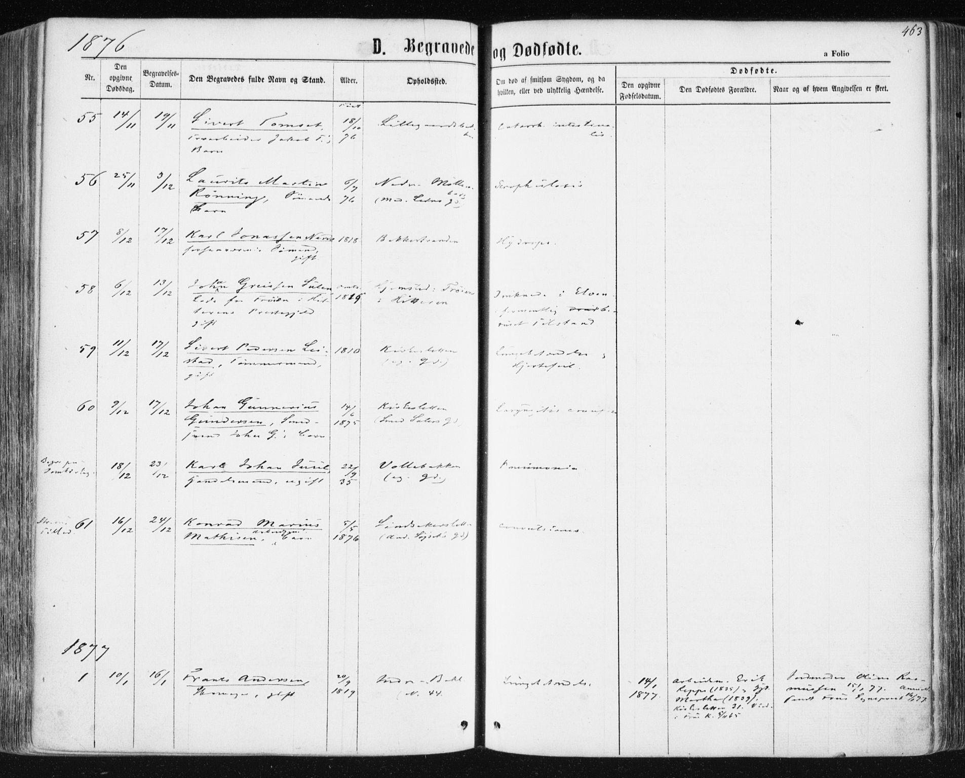 SAT, Ministerialprotokoller, klokkerbøker og fødselsregistre - Sør-Trøndelag, 604/L0186: Ministerialbok nr. 604A07, 1866-1877, s. 463