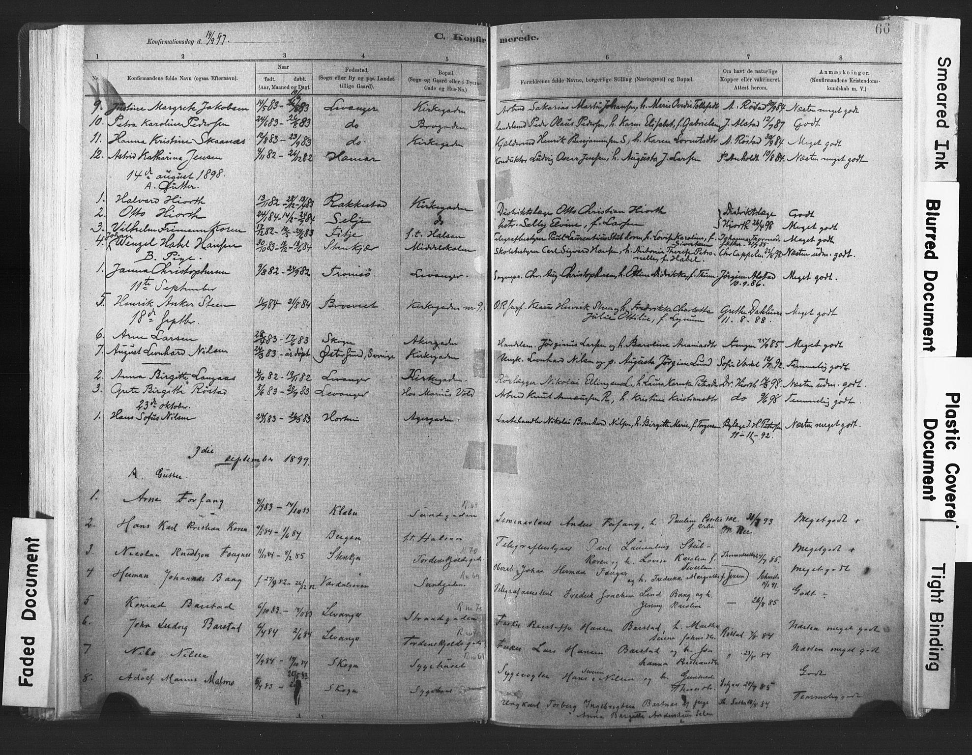 SAT, Ministerialprotokoller, klokkerbøker og fødselsregistre - Nord-Trøndelag, 720/L0189: Ministerialbok nr. 720A05, 1880-1911, s. 66