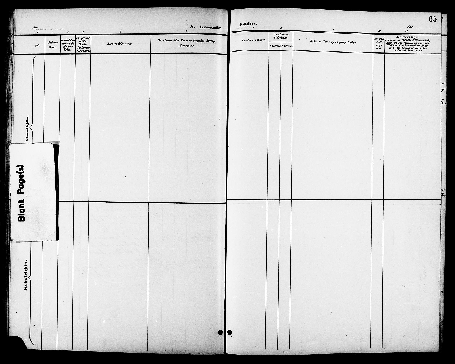SAT, Ministerialprotokoller, klokkerbøker og fødselsregistre - Sør-Trøndelag, 688/L1029: Klokkerbok nr. 688C04, 1899-1915, s. 65