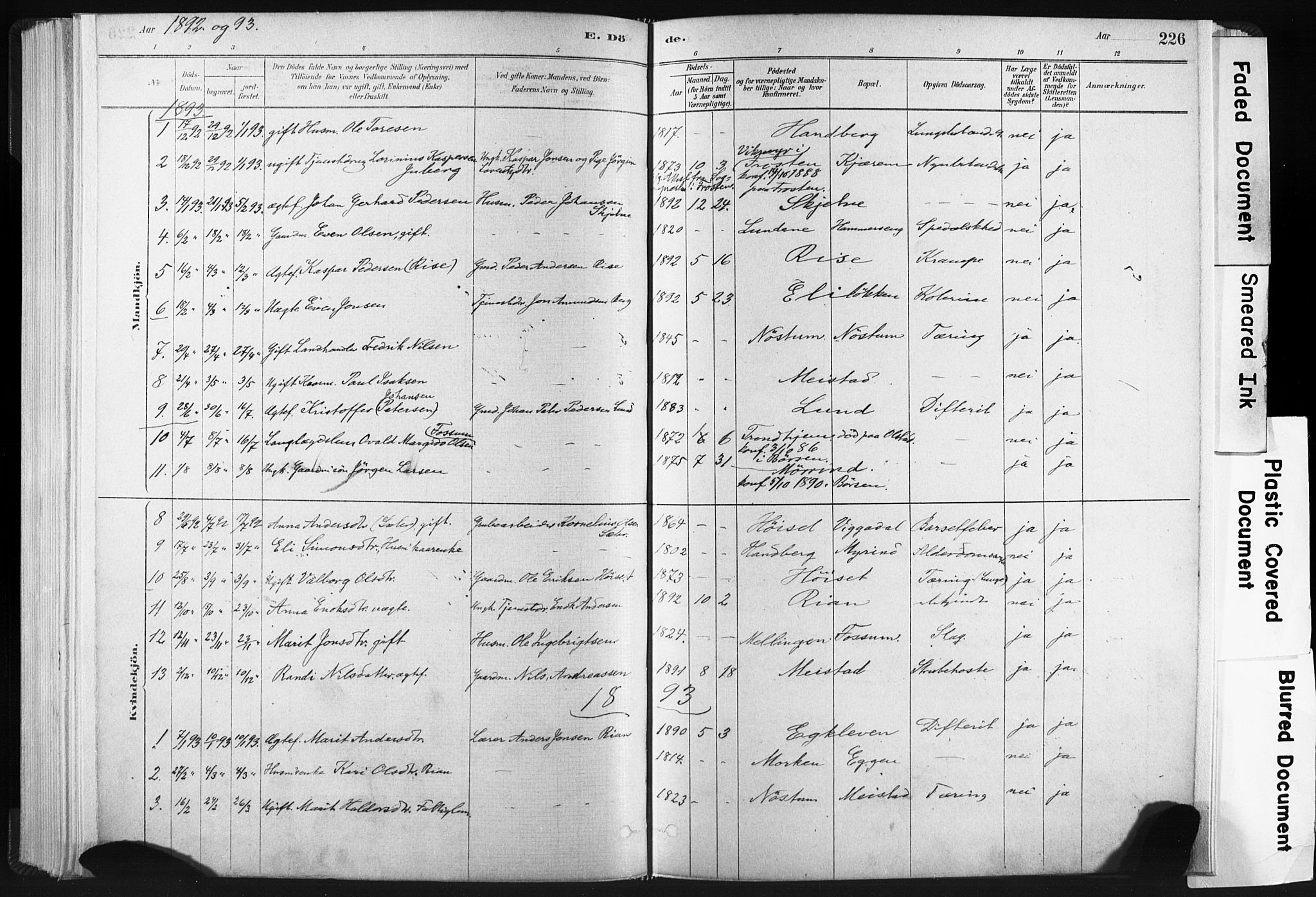 SAT, Ministerialprotokoller, klokkerbøker og fødselsregistre - Sør-Trøndelag, 665/L0773: Ministerialbok nr. 665A08, 1879-1905, s. 226