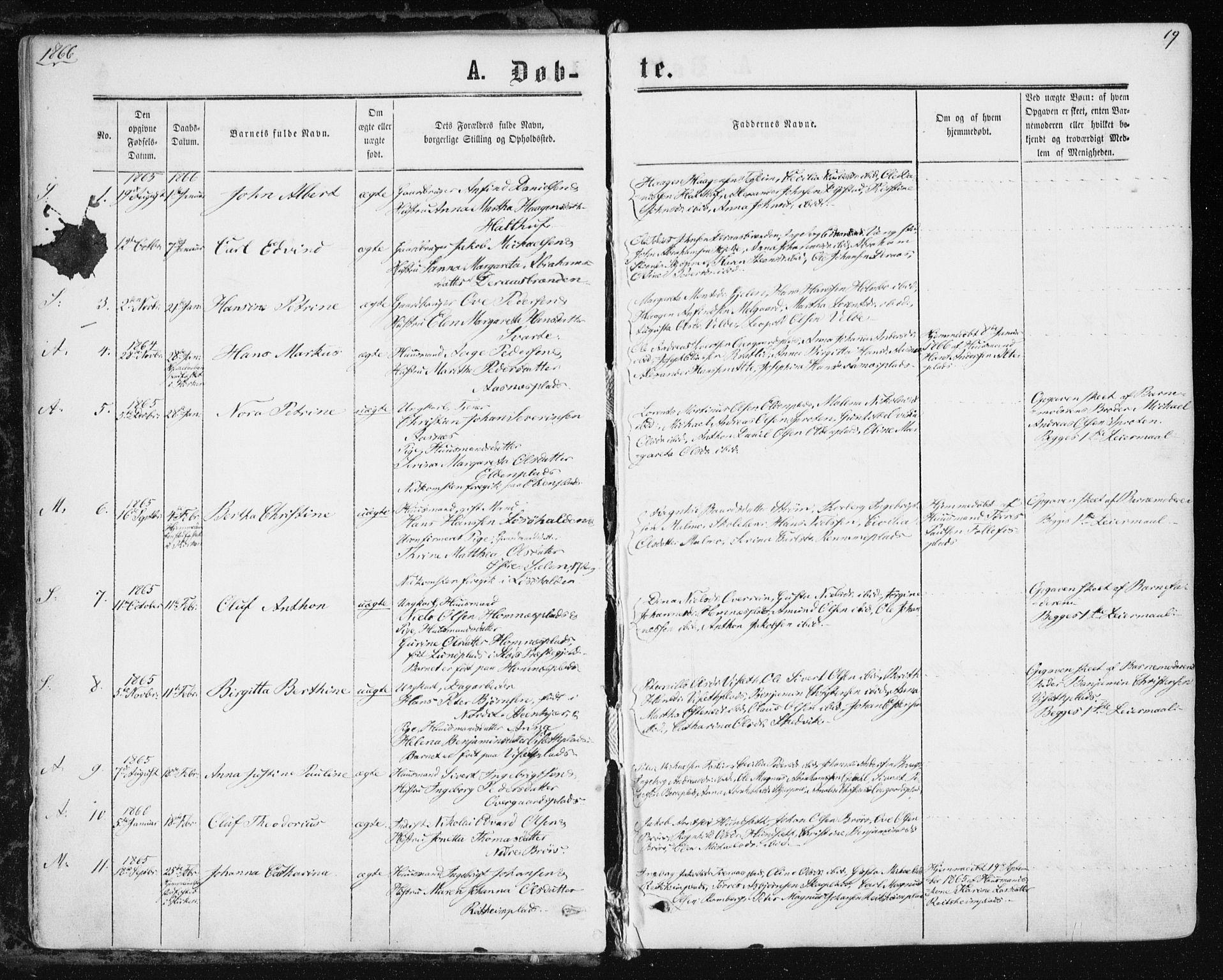 SAT, Ministerialprotokoller, klokkerbøker og fødselsregistre - Nord-Trøndelag, 741/L0394: Ministerialbok nr. 741A08, 1864-1877, s. 19