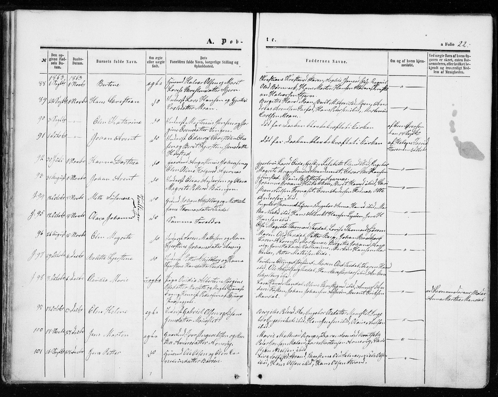 SAT, Ministerialprotokoller, klokkerbøker og fødselsregistre - Sør-Trøndelag, 655/L0678: Ministerialbok nr. 655A07, 1861-1873, s. 22