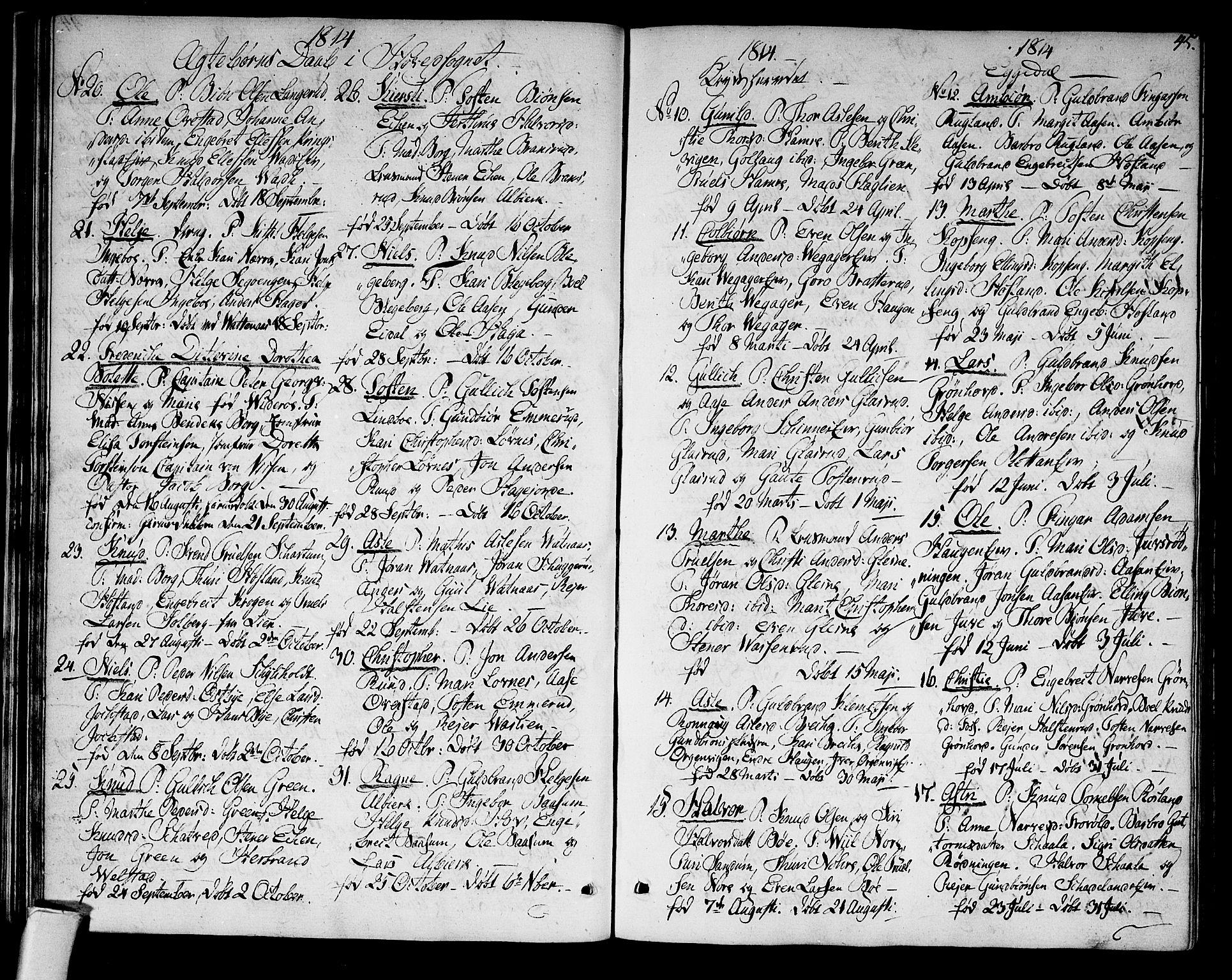 SAKO, Sigdal kirkebøker, F/Fa/L0004: Ministerialbok nr. I 4, 1812-1815, s. 45