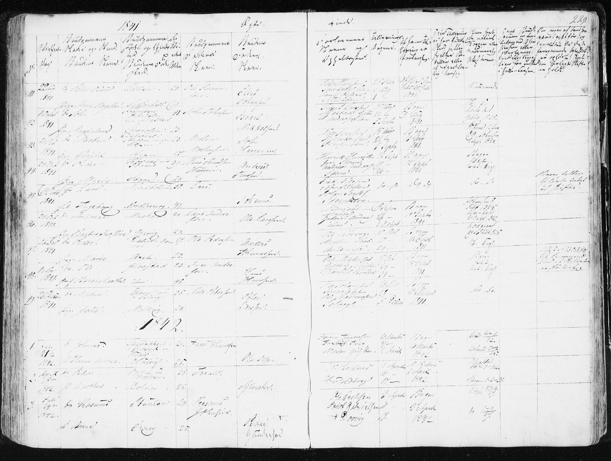 SAT, Ministerialprotokoller, klokkerbøker og fødselsregistre - Sør-Trøndelag, 634/L0528: Ministerialbok nr. 634A04, 1827-1842, s. 229