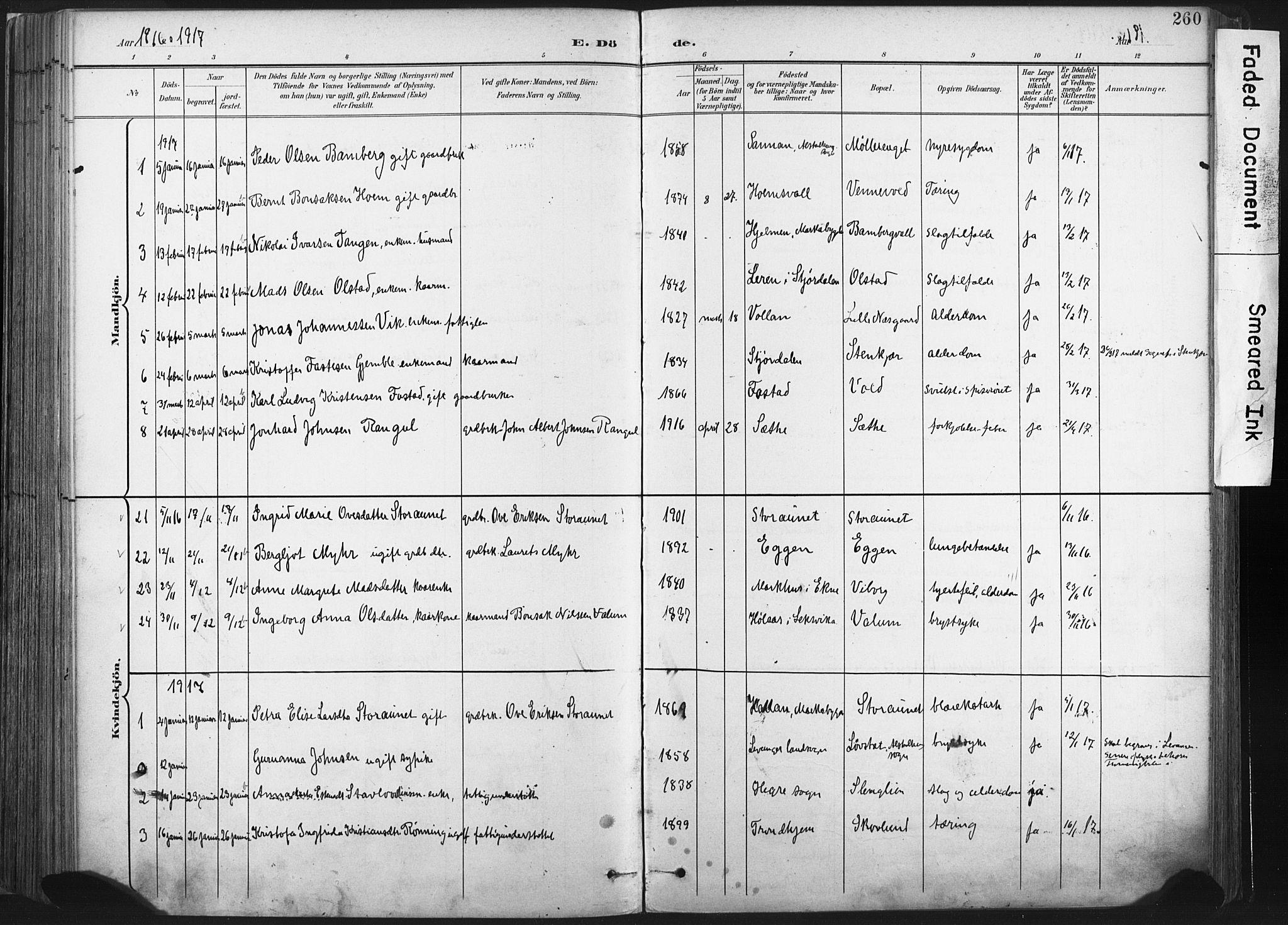 SAT, Ministerialprotokoller, klokkerbøker og fødselsregistre - Nord-Trøndelag, 717/L0162: Ministerialbok nr. 717A12, 1898-1923, s. 260