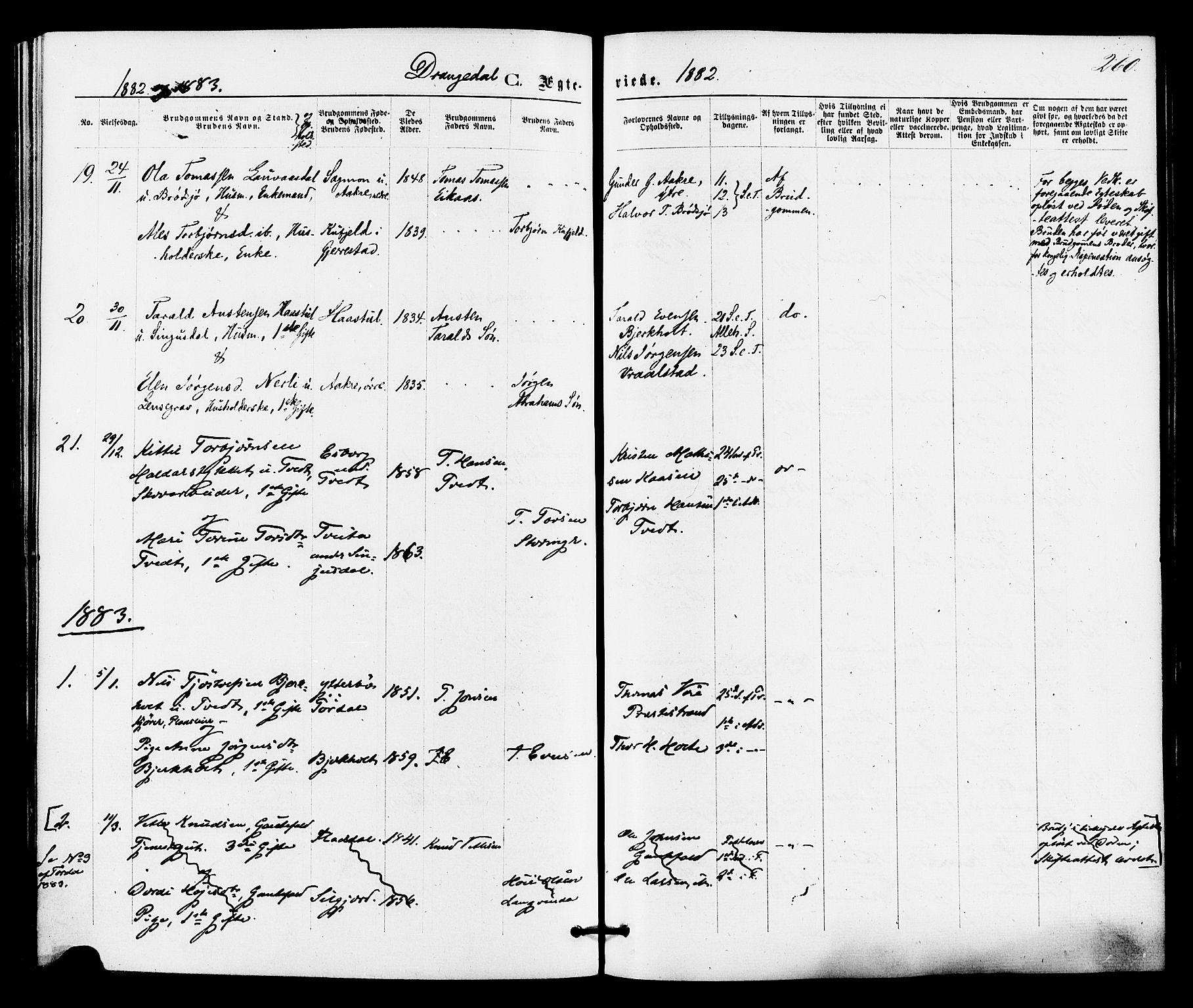 SAKO, Drangedal kirkebøker, F/Fa/L0009: Ministerialbok nr. 9 /1, 1872-1884, s. 260