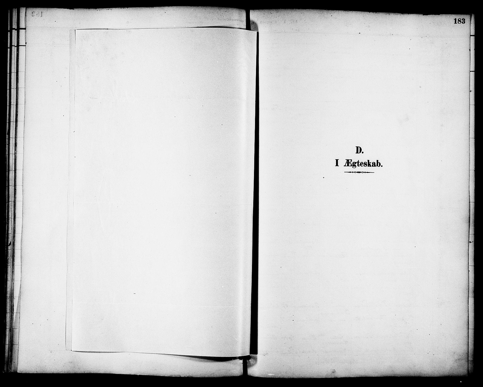 SAT, Ministerialprotokoller, klokkerbøker og fødselsregistre - Nordland, 863/L0898: Ministerialbok nr. 863A10, 1886-1897, s. 183
