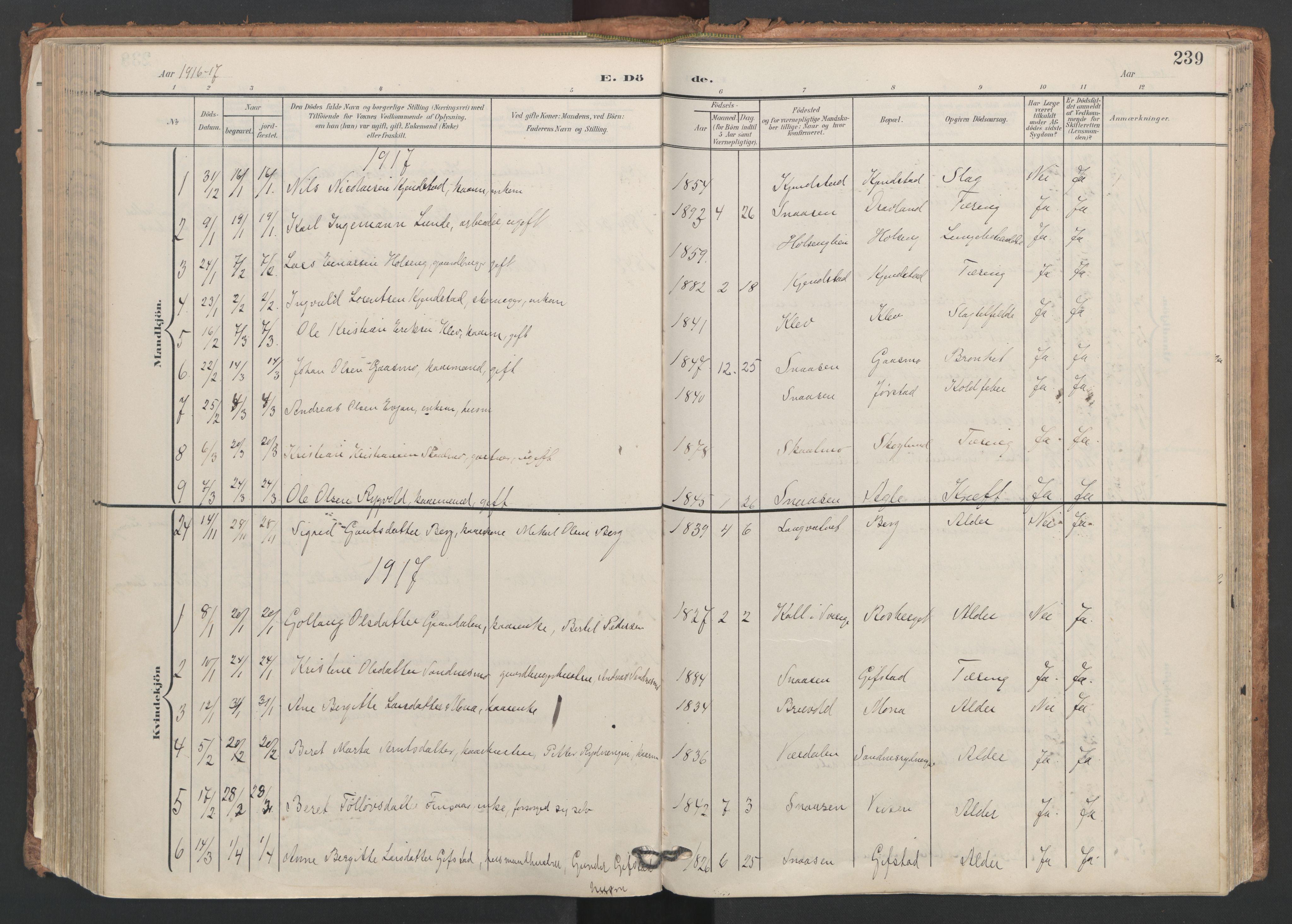 SAT, Ministerialprotokoller, klokkerbøker og fødselsregistre - Nord-Trøndelag, 749/L0477: Ministerialbok nr. 749A11, 1902-1927, s. 239