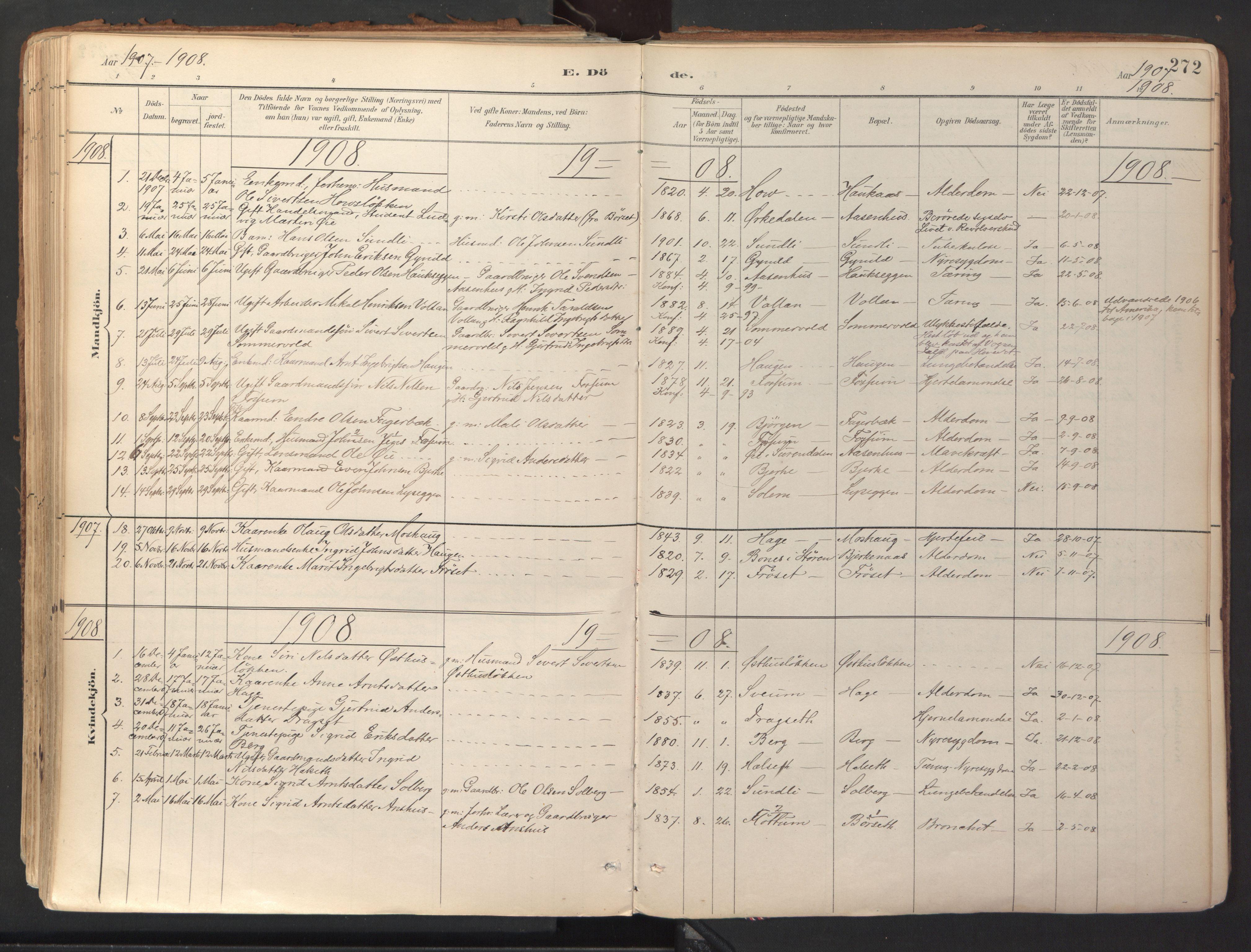 SAT, Ministerialprotokoller, klokkerbøker og fødselsregistre - Sør-Trøndelag, 689/L1041: Ministerialbok nr. 689A06, 1891-1923, s. 272