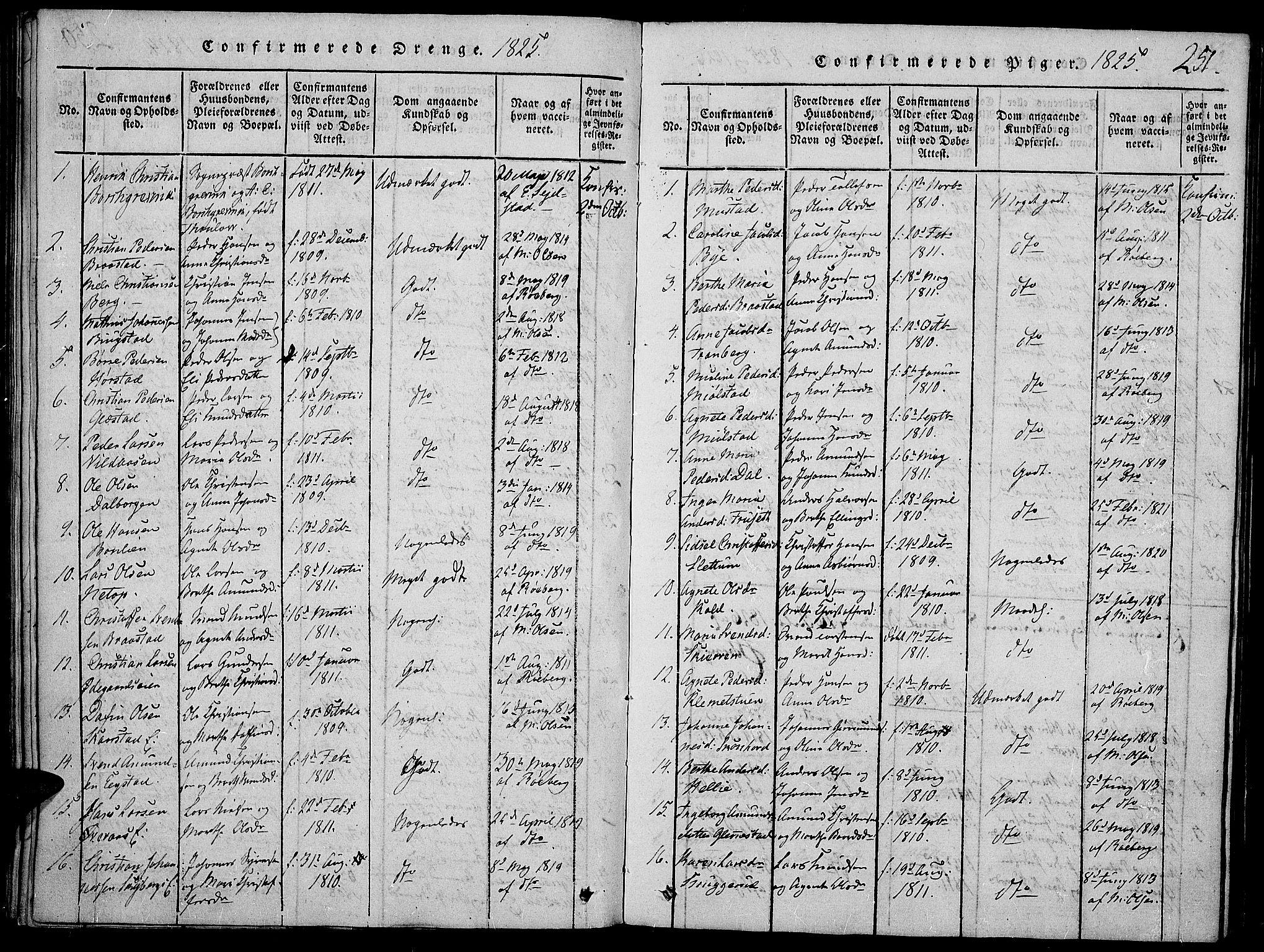 SAH, Vardal prestekontor, H/Ha/Haa/L0004: Ministerialbok nr. 4, 1814-1831, s. 251
