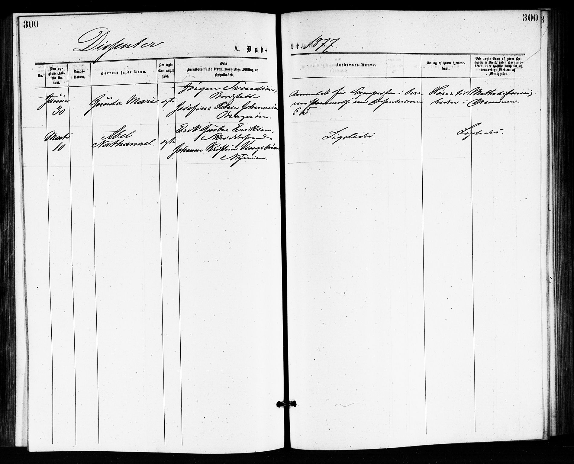 SAKO, Bragernes kirkebøker, F/Fb/L0005: Ministerialbok nr. II 5, 1875-1877, s. 300