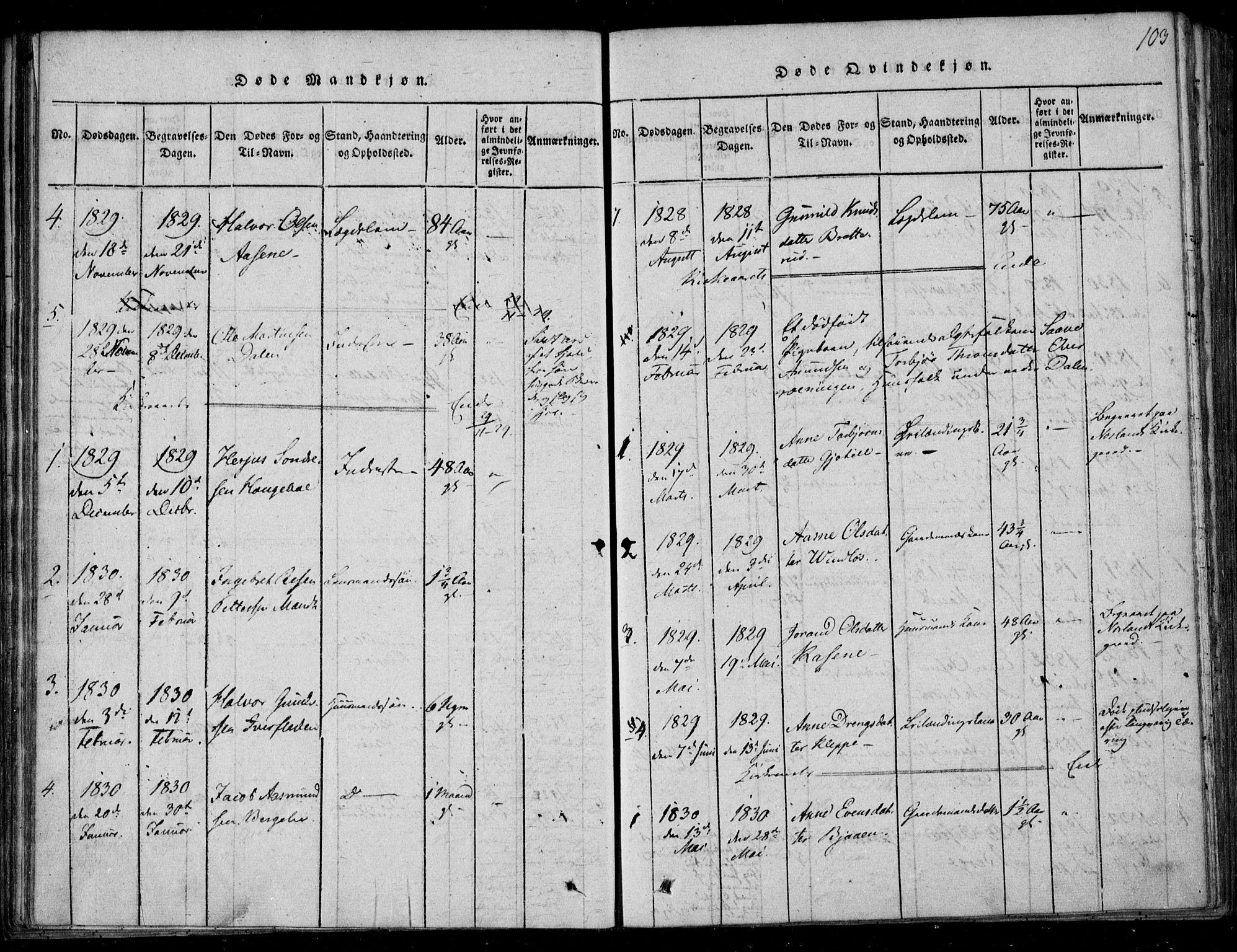 SAKO, Lårdal kirkebøker, F/Fb/L0001: Ministerialbok nr. II 1, 1815-1860, s. 103