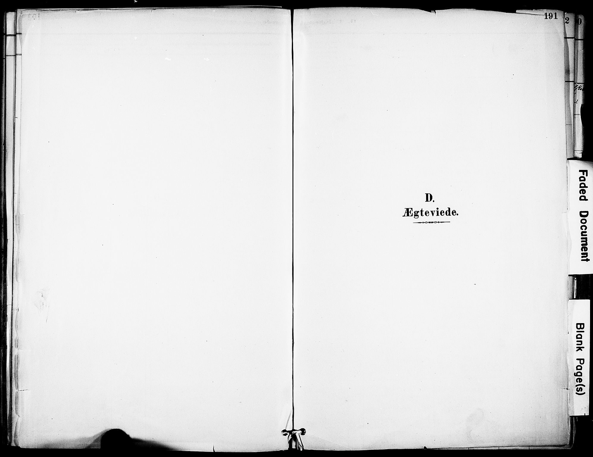 SAKO, Solum kirkebøker, F/Fa/L0010: Ministerialbok nr. I 10, 1888-1898, s. 191