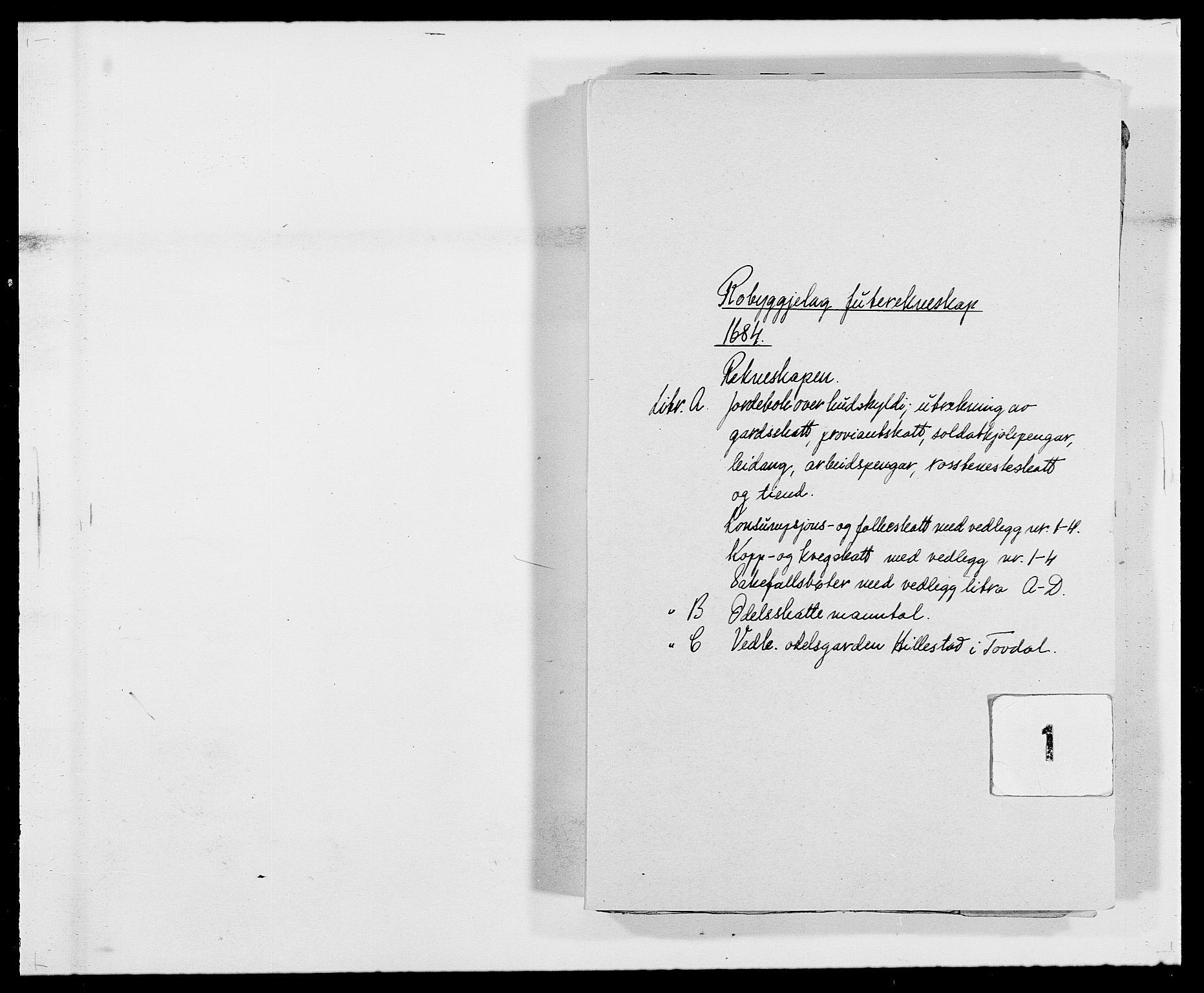 RA, Rentekammeret inntil 1814, Reviderte regnskaper, Fogderegnskap, R40/L2439: Fogderegnskap Råbyggelag, 1684-1685, s. 1