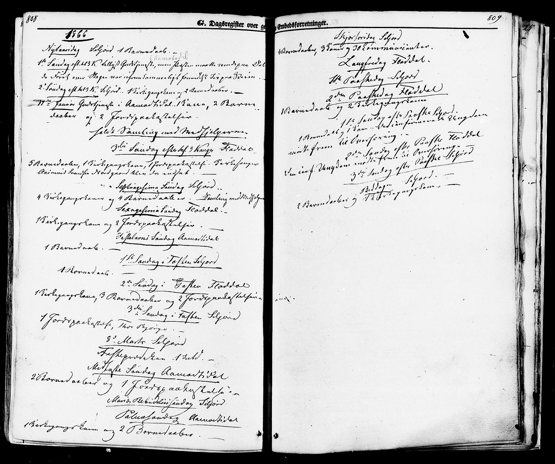 SAKO, Seljord kirkebøker, F/Fa/L0013: Ministerialbok nr. I 13, 1866-1876, s. 808-809