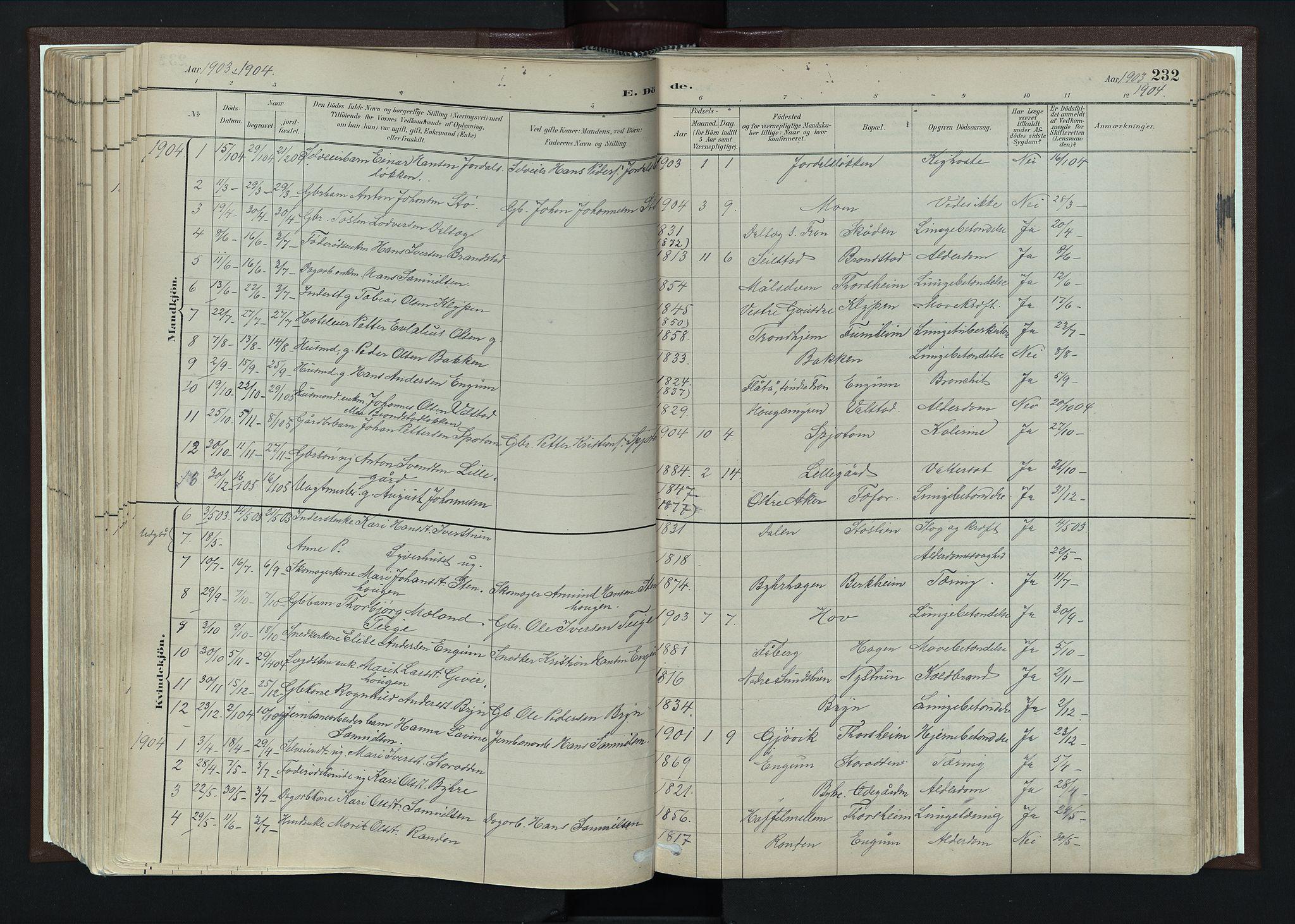 SAH, Nord-Fron prestekontor, Ministerialbok nr. 4, 1884-1914, s. 232