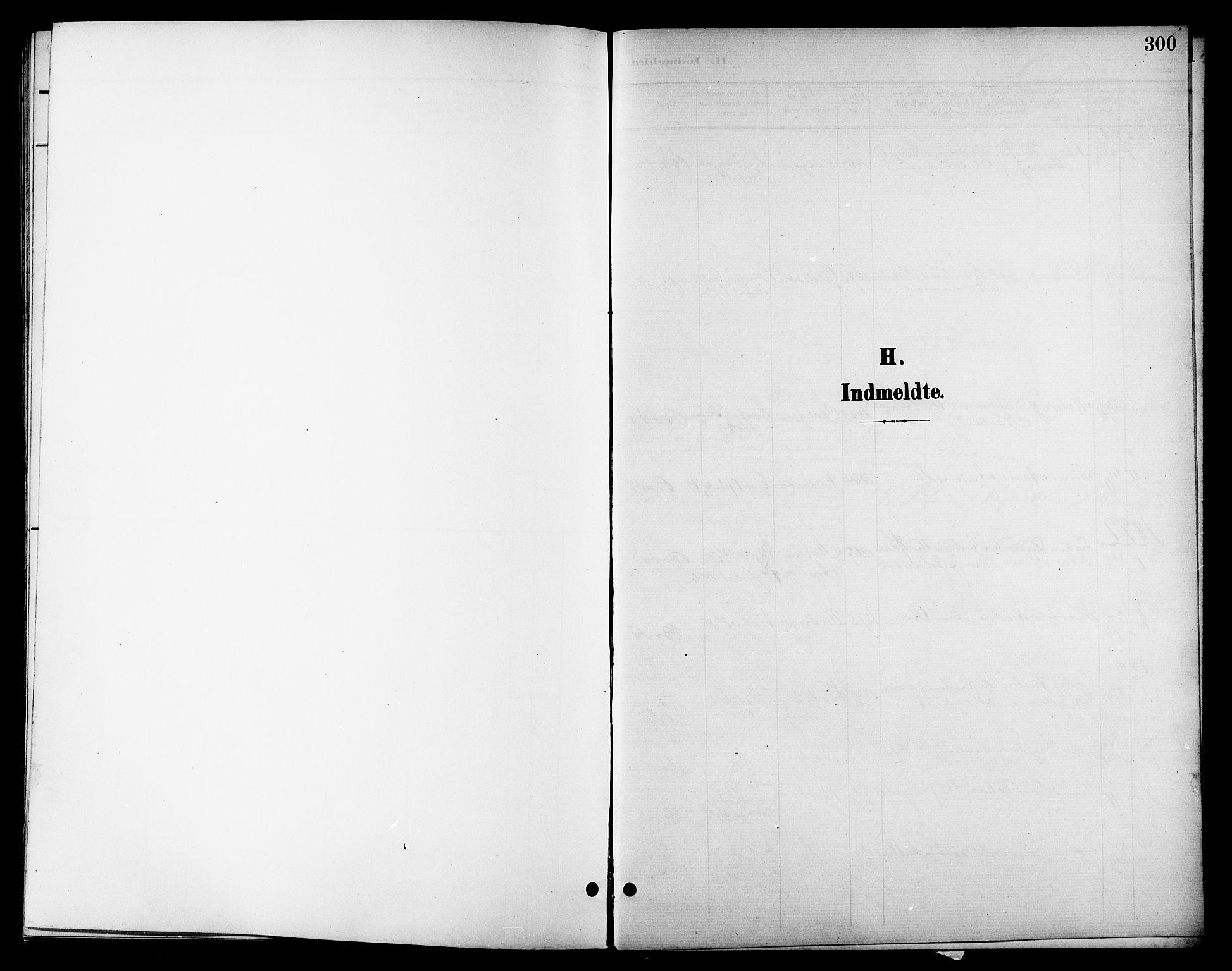 SAT, Ministerialprotokoller, klokkerbøker og fødselsregistre - Nordland, 801/L0033: Klokkerbok nr. 801C08, 1898-1910, s. 300