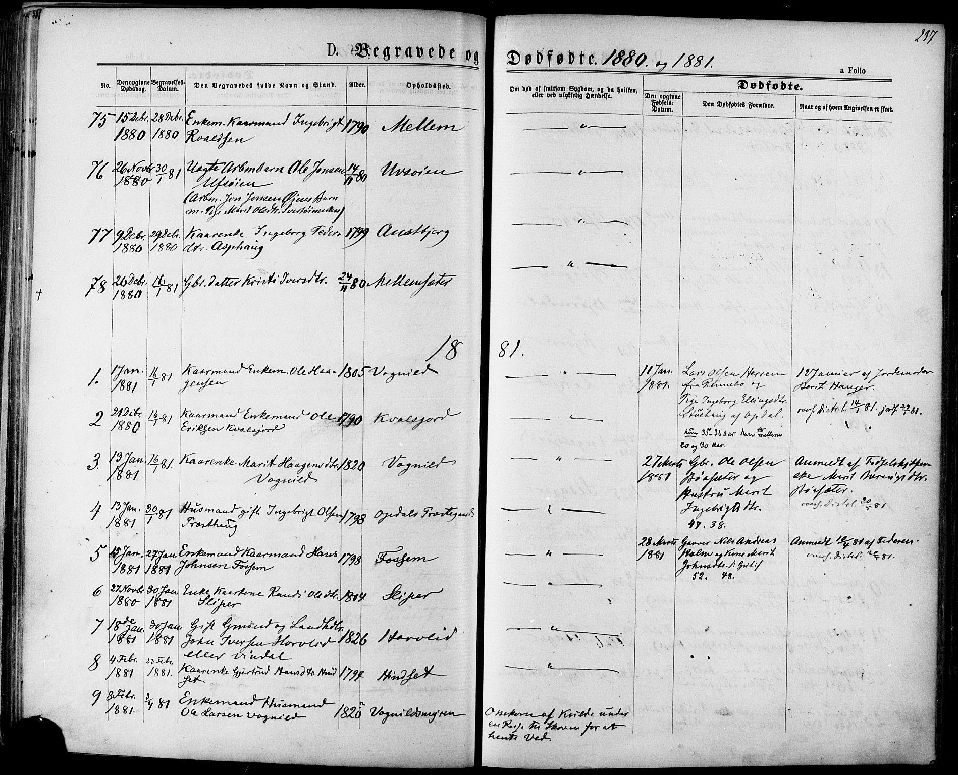SAT, Ministerialprotokoller, klokkerbøker og fødselsregistre - Sør-Trøndelag, 678/L0900: Ministerialbok nr. 678A09, 1872-1881, s. 237